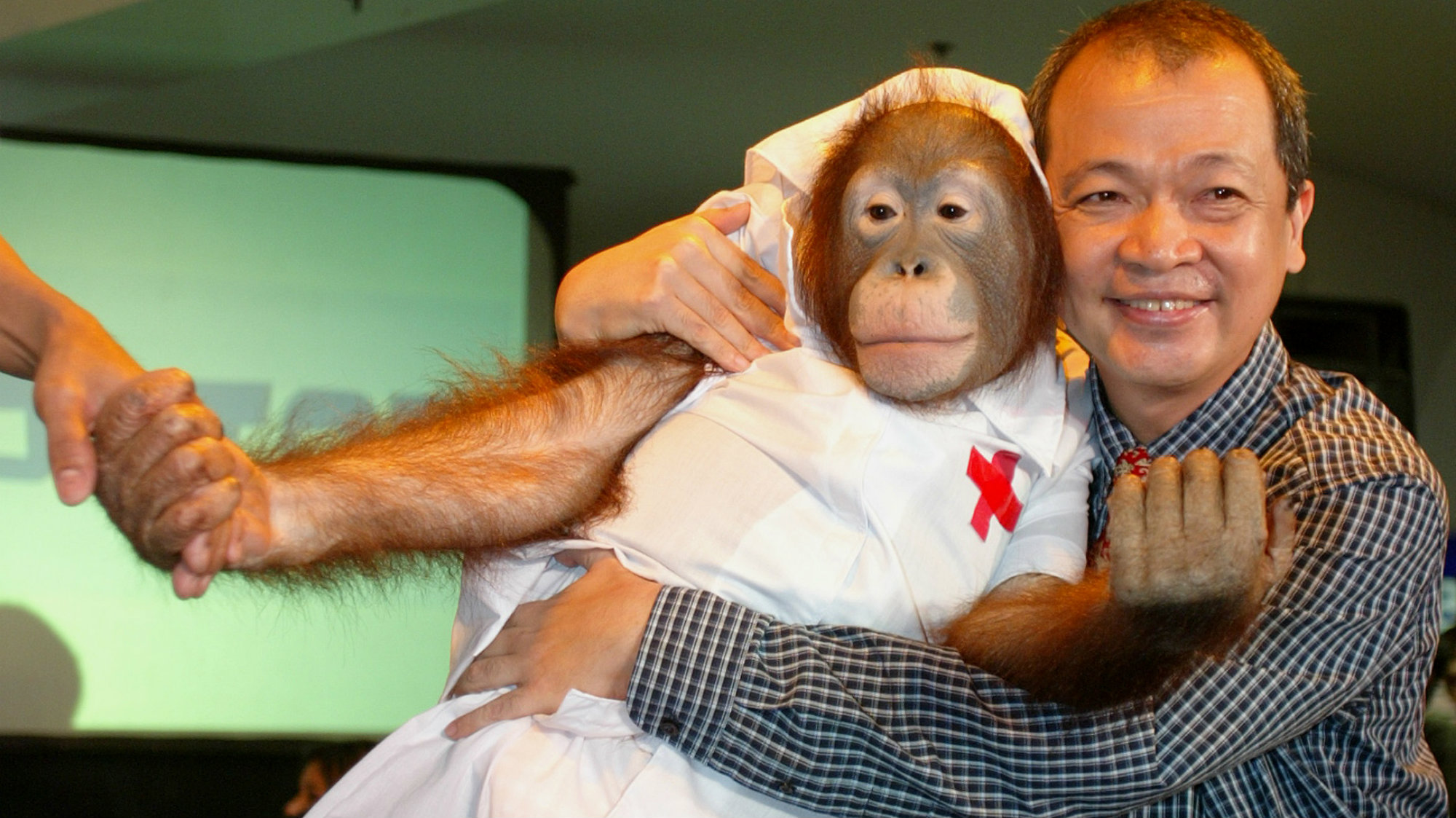 An orangutan, dressed as a nurse, models with a Filipino doctor during a fashion show for dogs at a shopping mall in Manila October 8, 2005.