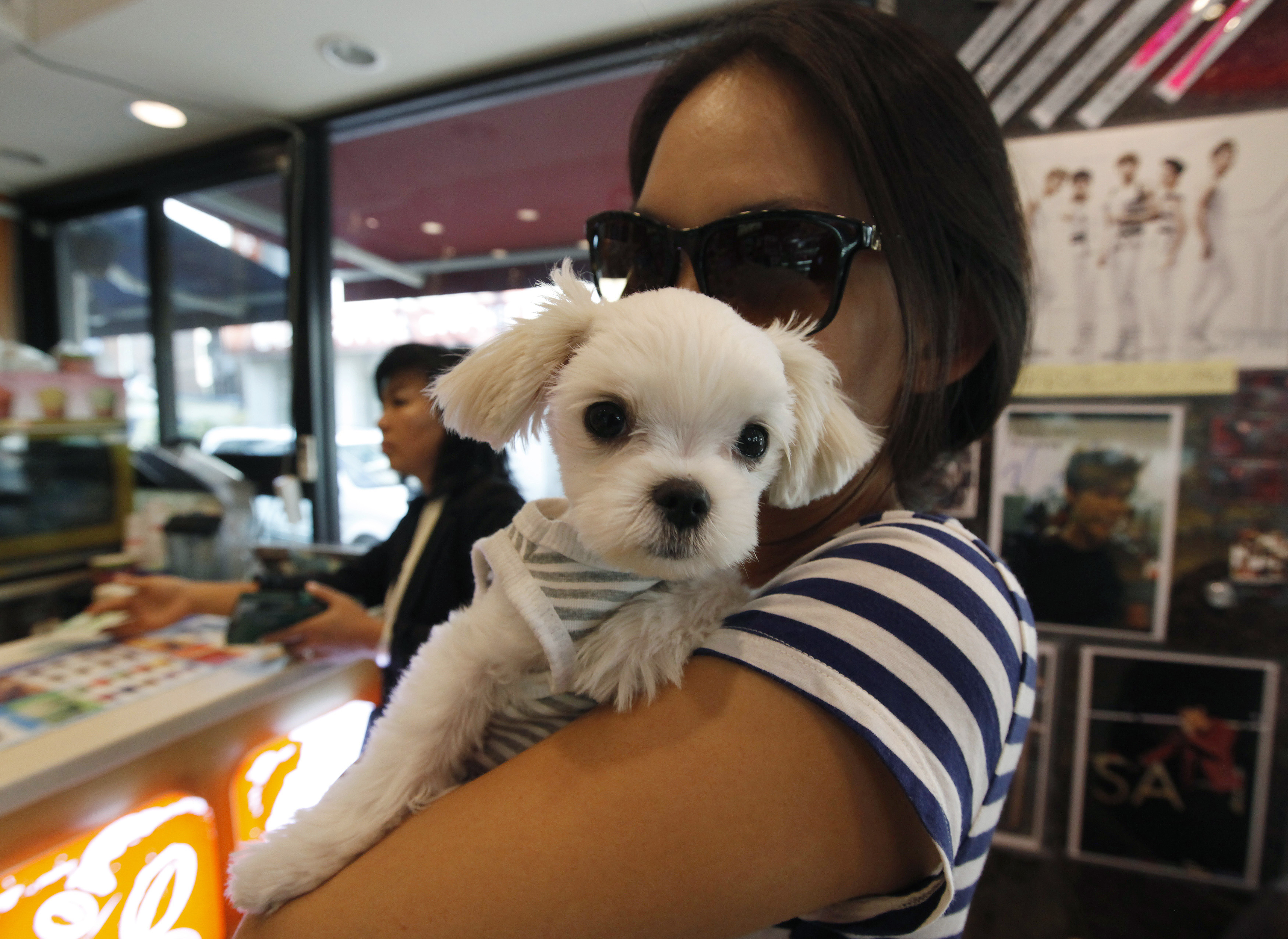 A woman carries her puppy at a cafe in the Gangnam area of Seoul