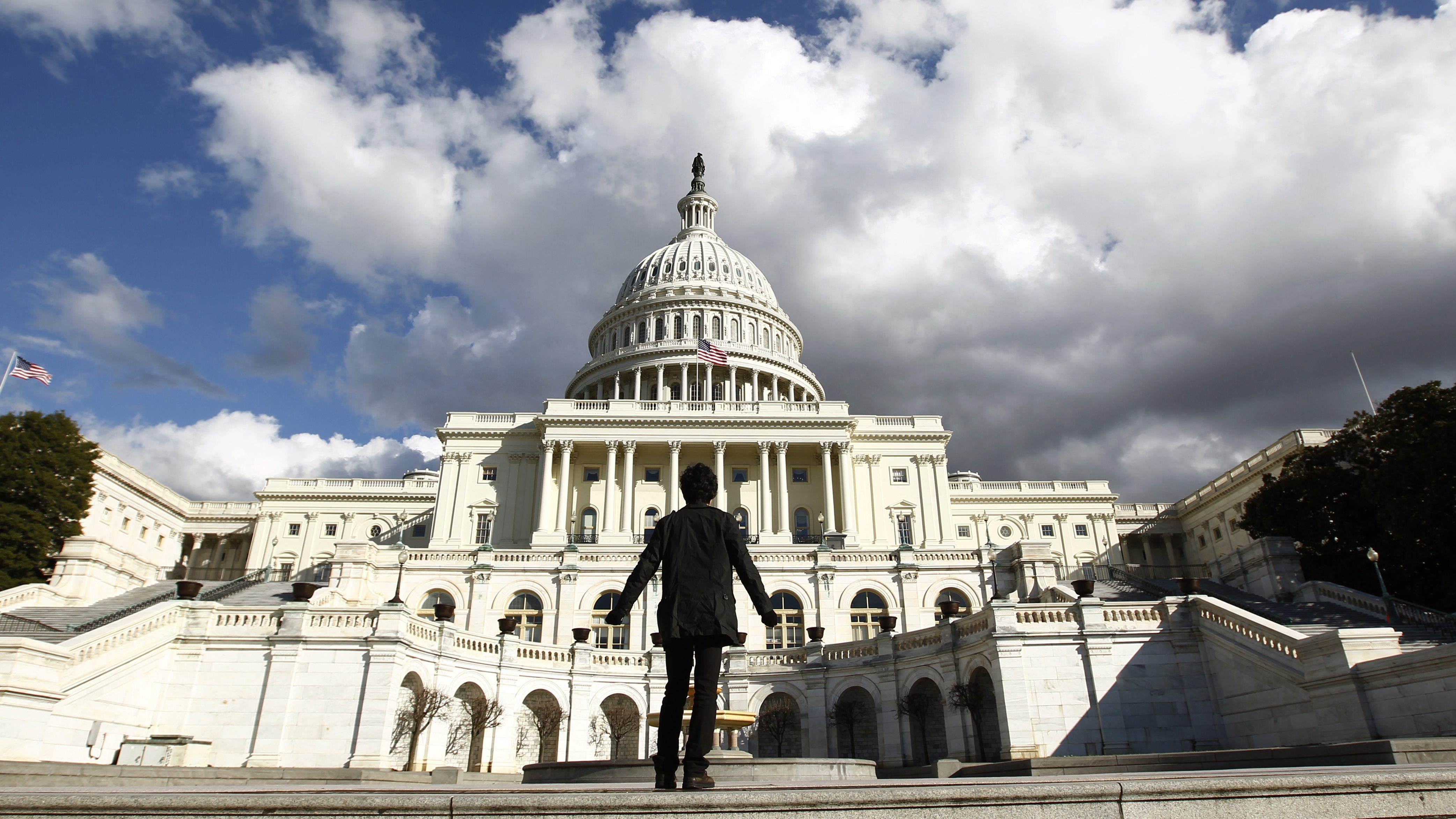 A tourist gazes up towards the dome of the U.S. Capitol in Washington January 25, 2010.  On Wednesday, U.S. President Barack Obama will deliver his first State of the Union speech in the House Chamber of the Capitol.
