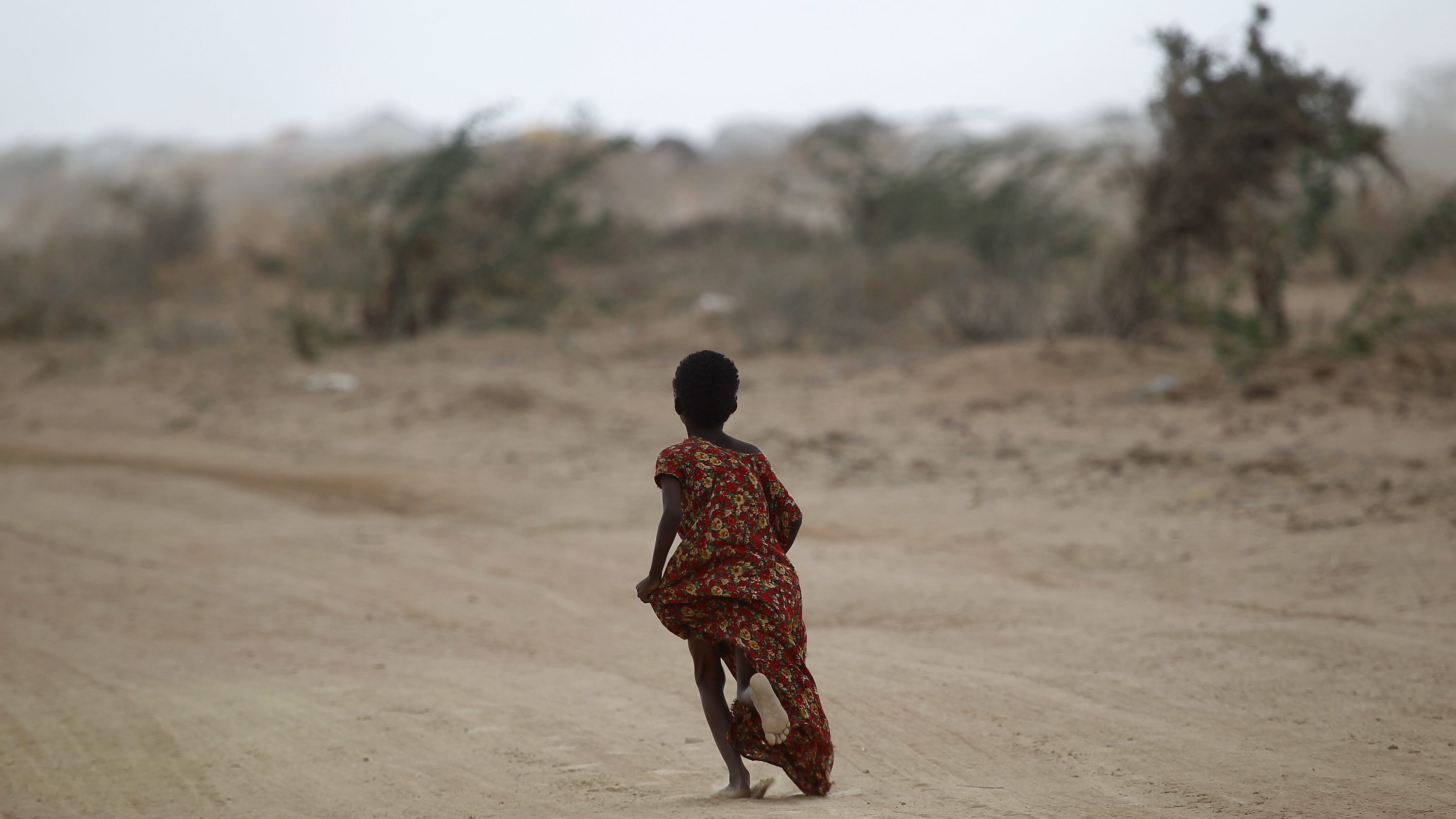The UN famine appeal has reached only 20% of its target