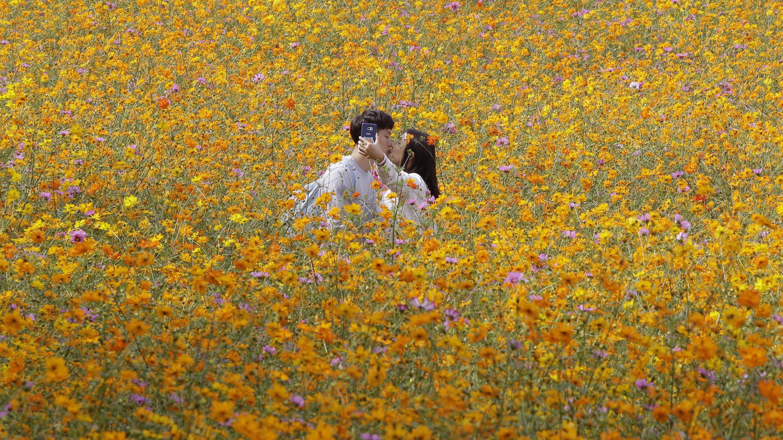 romance – Quartz