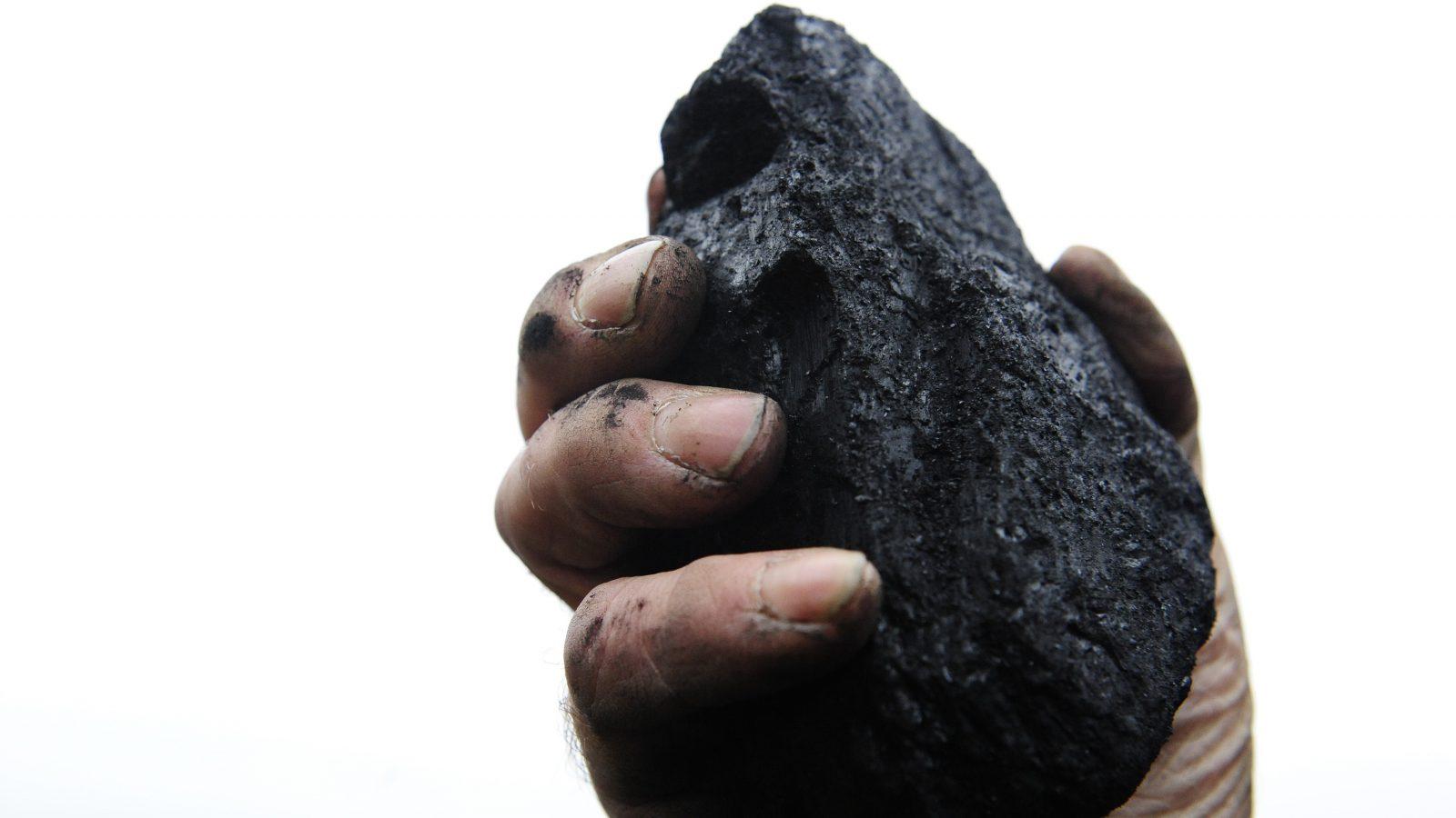 A coal merchant holds up a lump of coal.