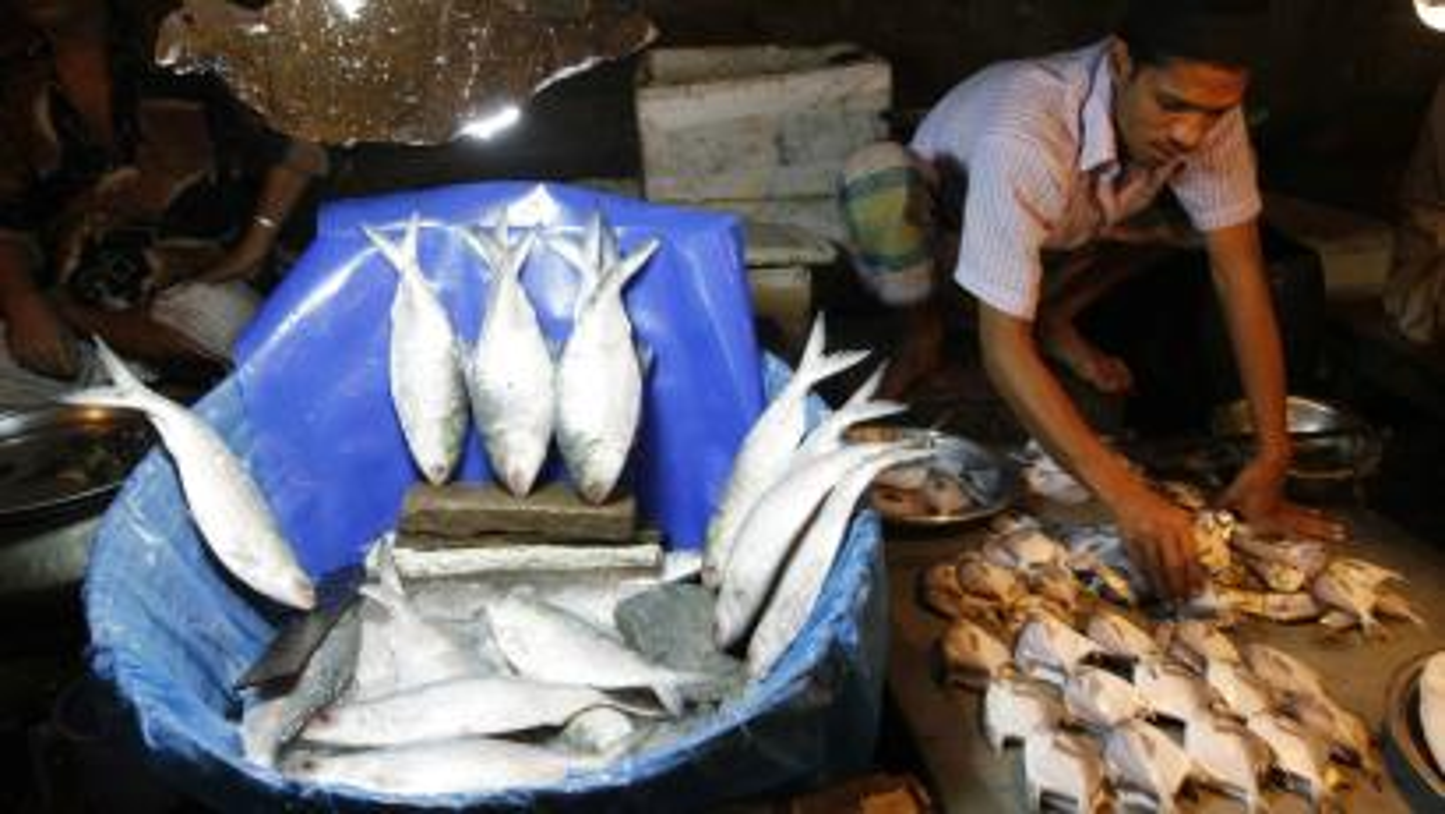 Bangladesh-Fish-Food-Protein