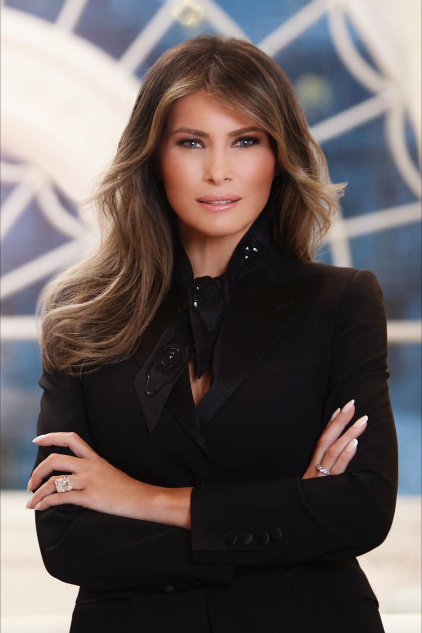 Marvelous Melania Trumps Official White House Portrait As First Lady Short Links Chair Design For Home Short Linksinfo