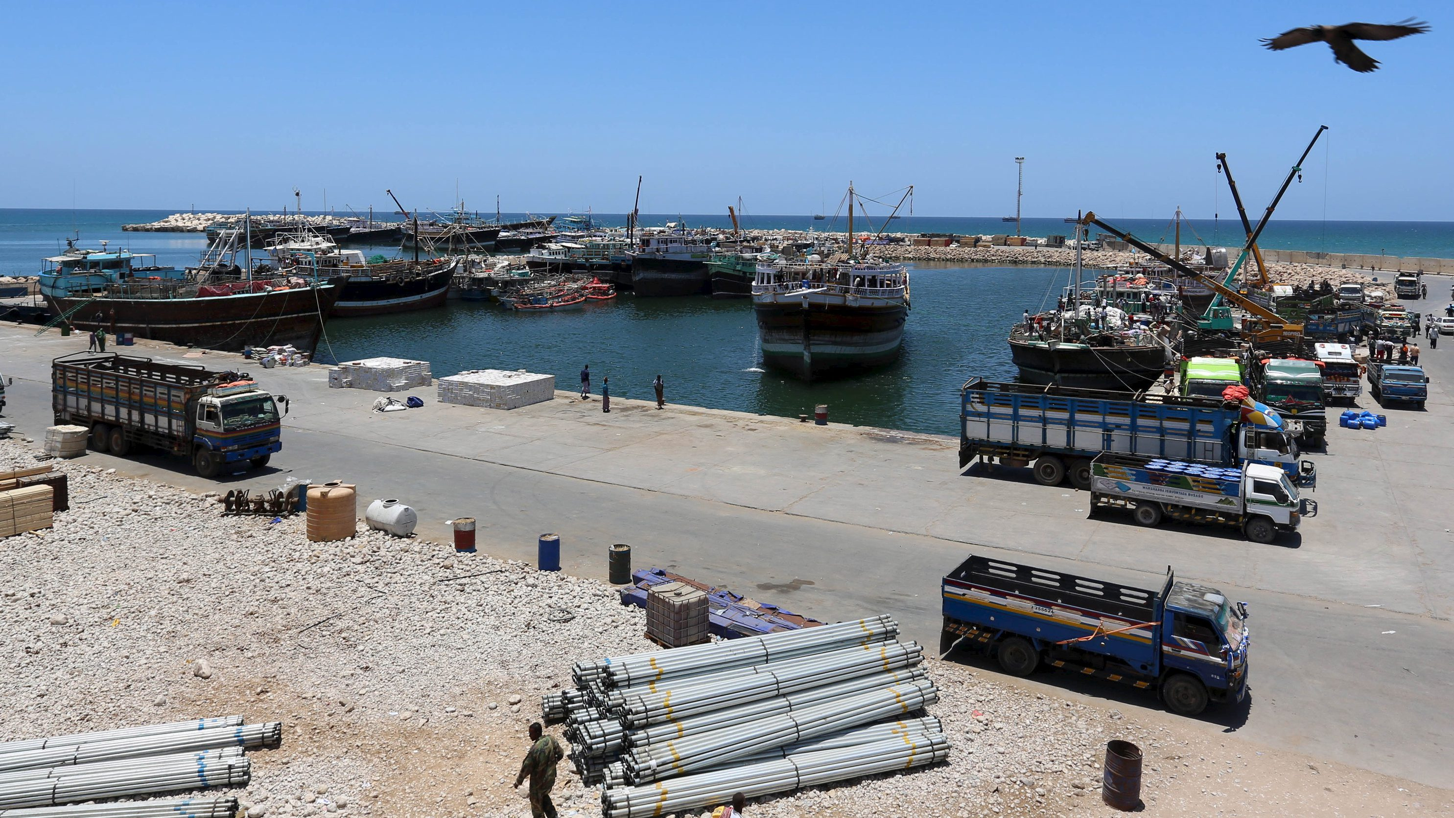 An eagle over flies at the Port of Bosaso in Somalia's Puntland.