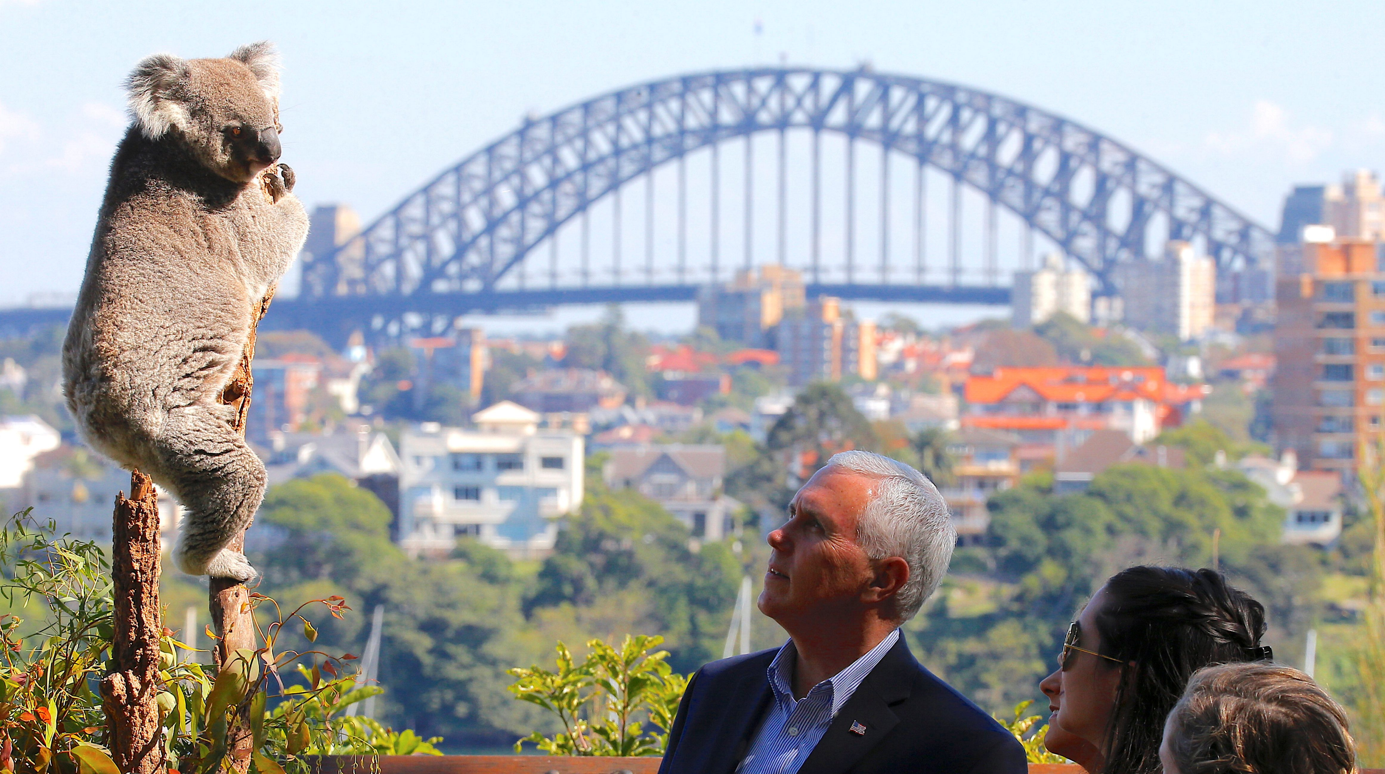 US vice president Mike Pence looks at a koala during a visit to Taronga Zoo in Sydney, Australia, April 23, 2017.