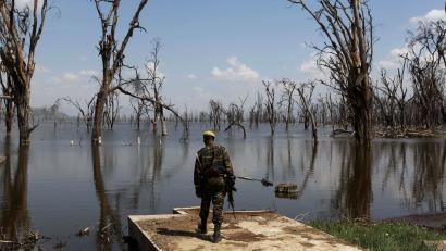 """A park ranger surveys damage caused by flooding at Lake Nakuru National Park, Kenya, August 18, 2015. The Park is home to some of the world's most majestic wildlife including lions, rhinos, zebras and flamingos. The scenery is stunning, from forests of acacia trees to animals congregating at the shores to drink. UNESCO says that with rapid population growth nearby, the area is under """"considerable threat from surrounding pressures,"""" particularly deforestation, a contributing factor in floods."""