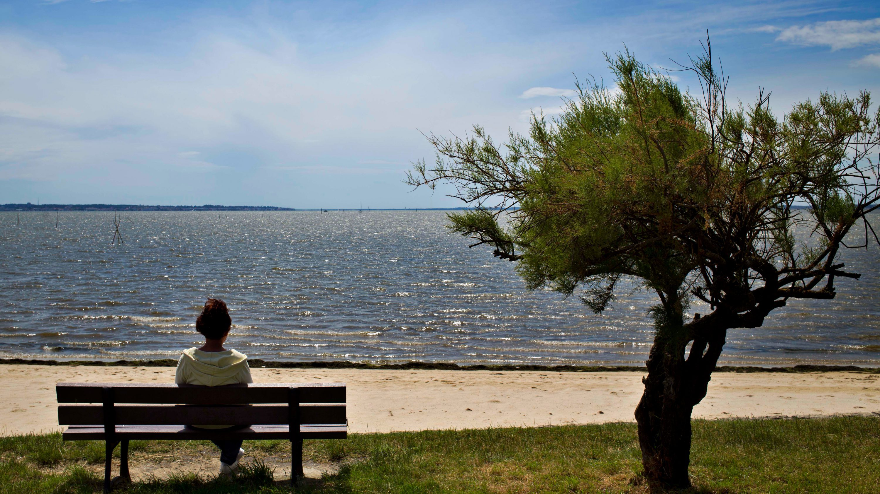 woman sitting on a bench in front of beach