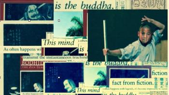 Shaolin collage.