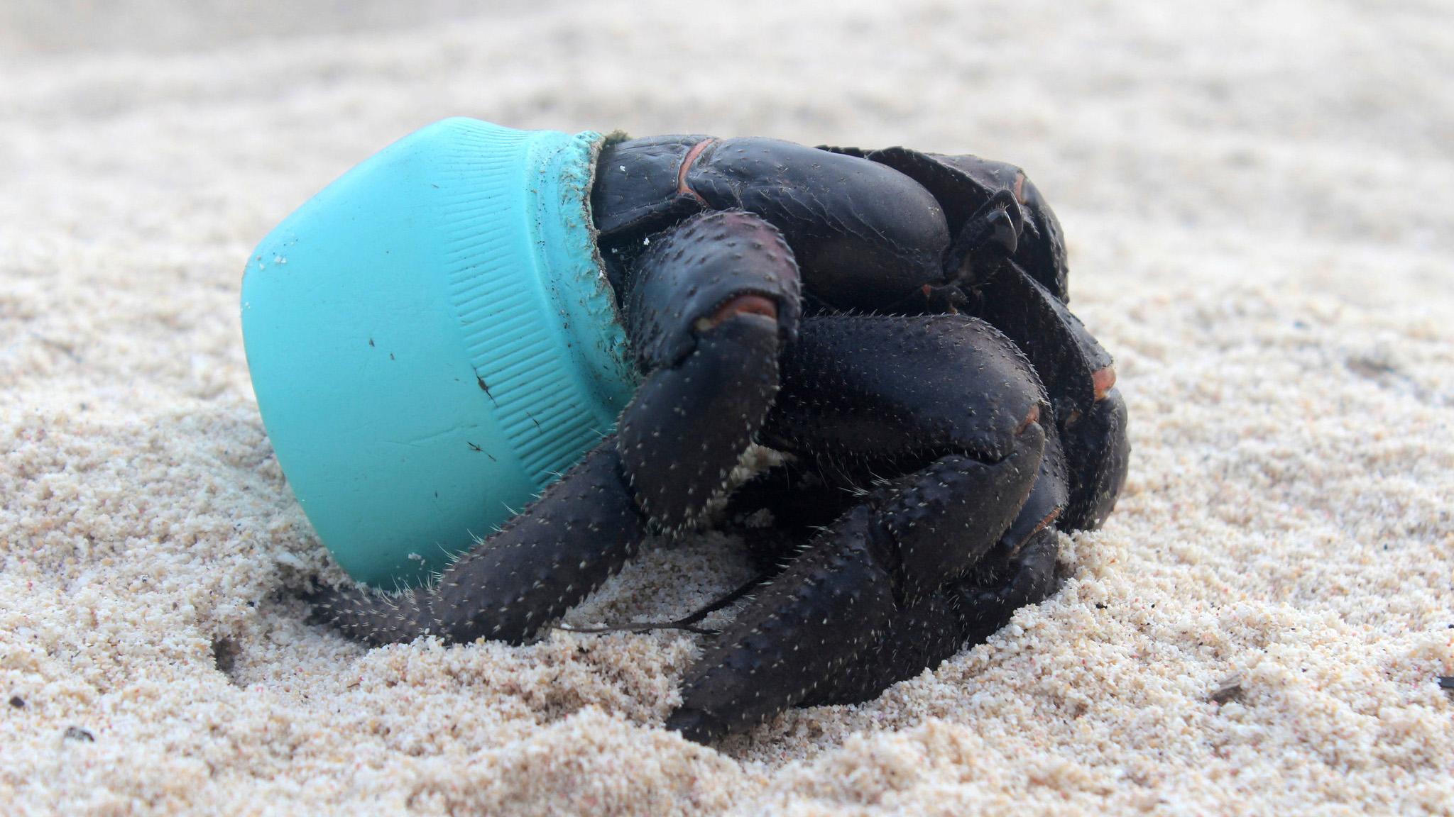 henderson-island-plastic