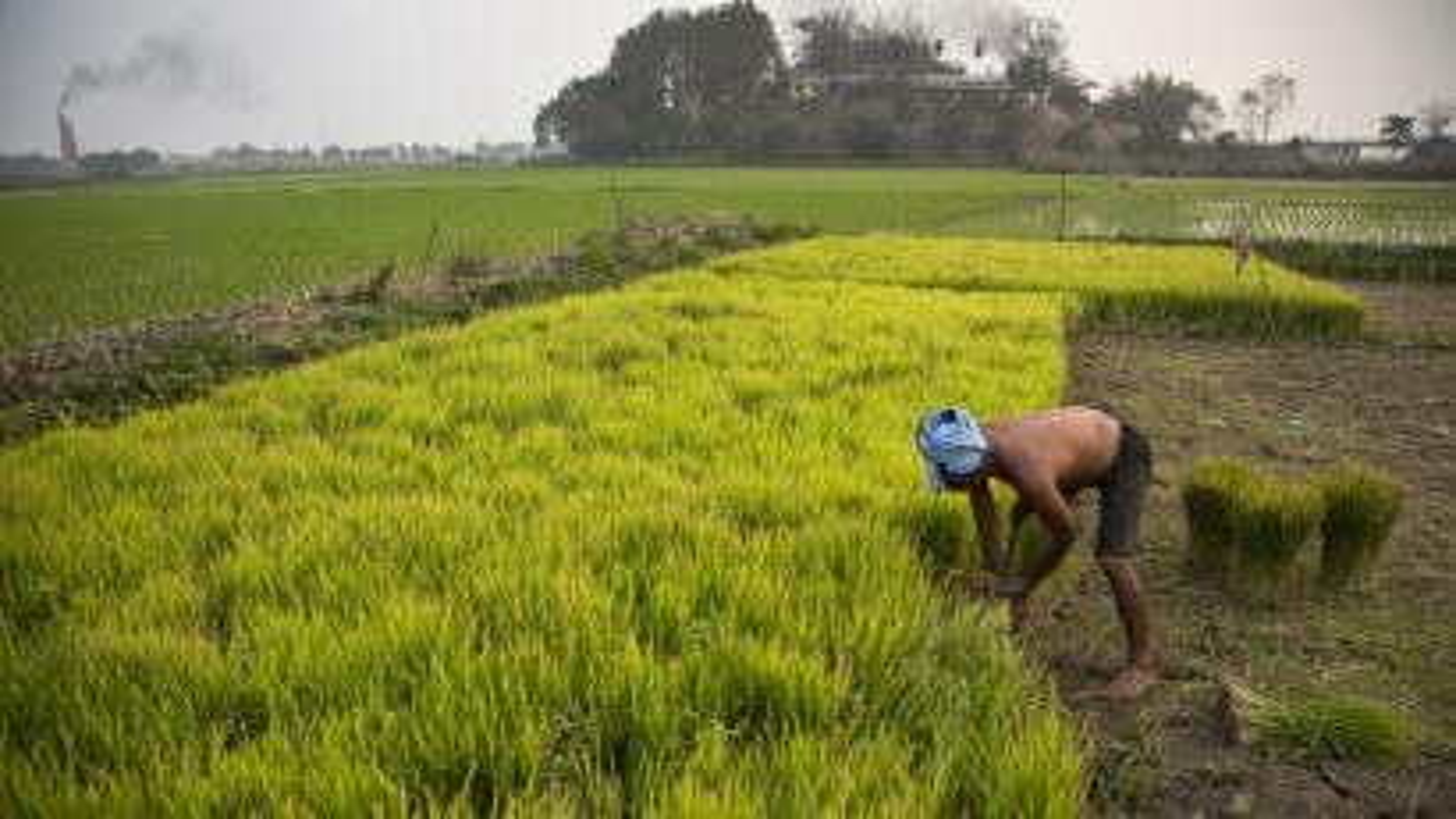 Narendra Modi-GDP-GST-Arun Jaitley-Development
