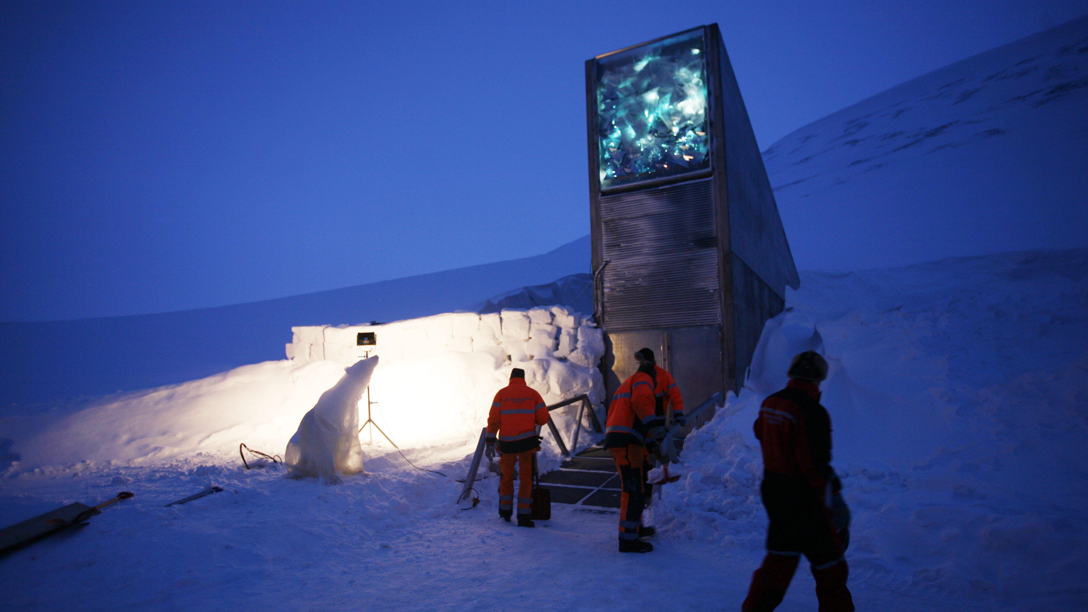 Svalbard Global Seed Vault Art