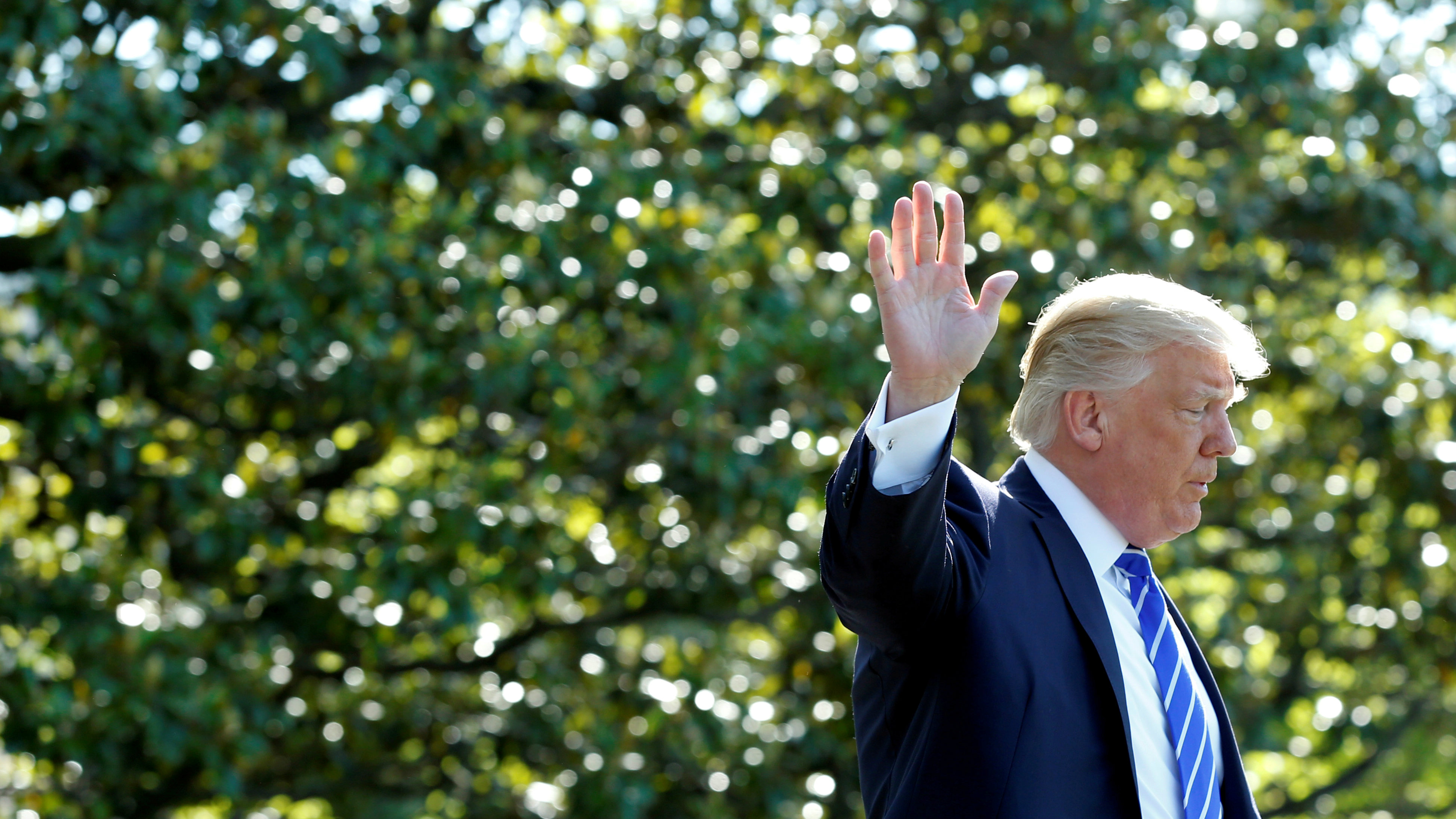 US president Donald Trump waves from a garden