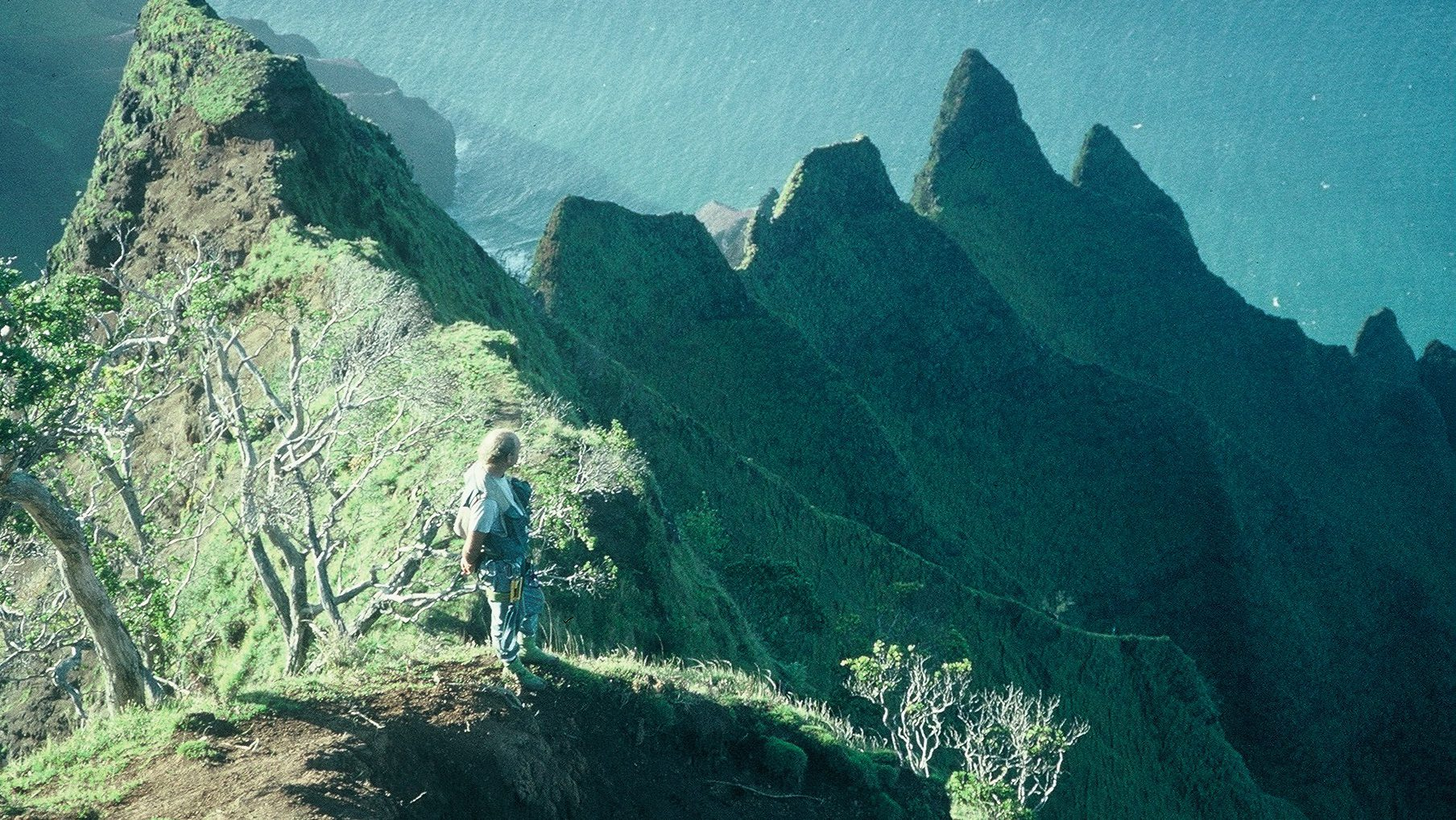 Steve Perlman on the Kalalau cliffs on the Hawaiian island of Kauai.