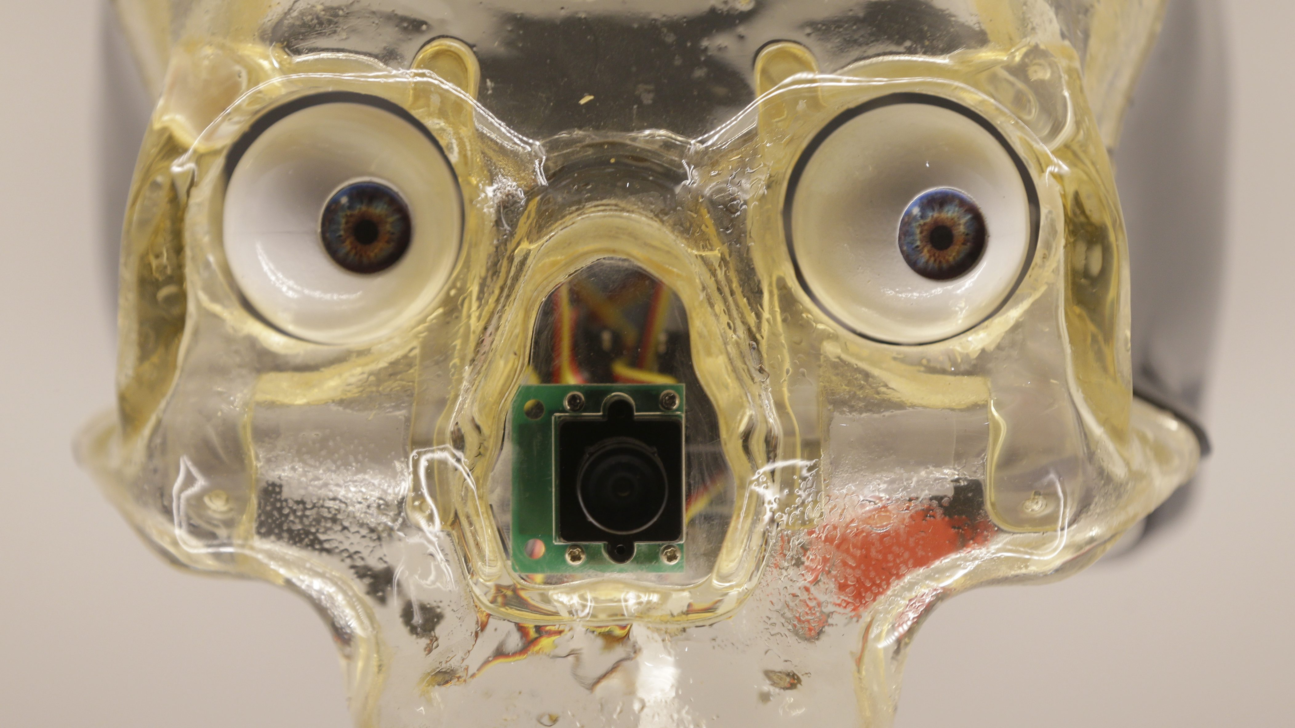 Artwork by Canadian Louis-Philippe Demers, which shows an artificial skull with robotic eyes which follows the motion of a visitor, during a press preview for the Robots exhibition held at the Science Museum in London, Tuesday, Feb. 7, 2017. The exhibition which shows 500 years of mechanical and robotic advances is open to the public form Feb. 8 through to Sept. 3. (AP Photo/Alastair Grant)