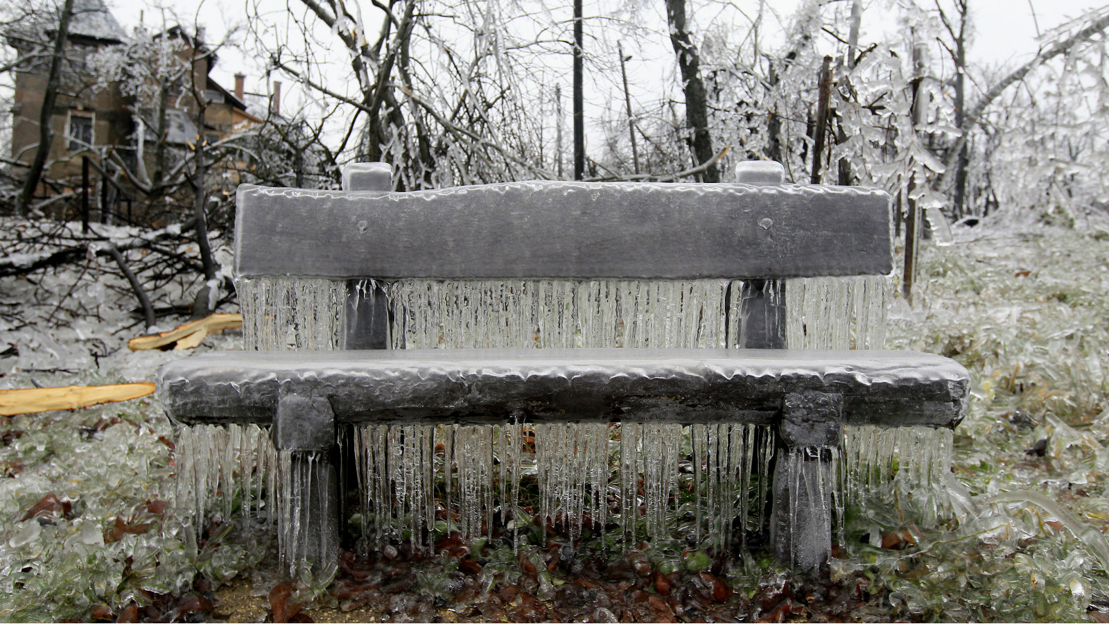 A bench covered in ice in Budapest.