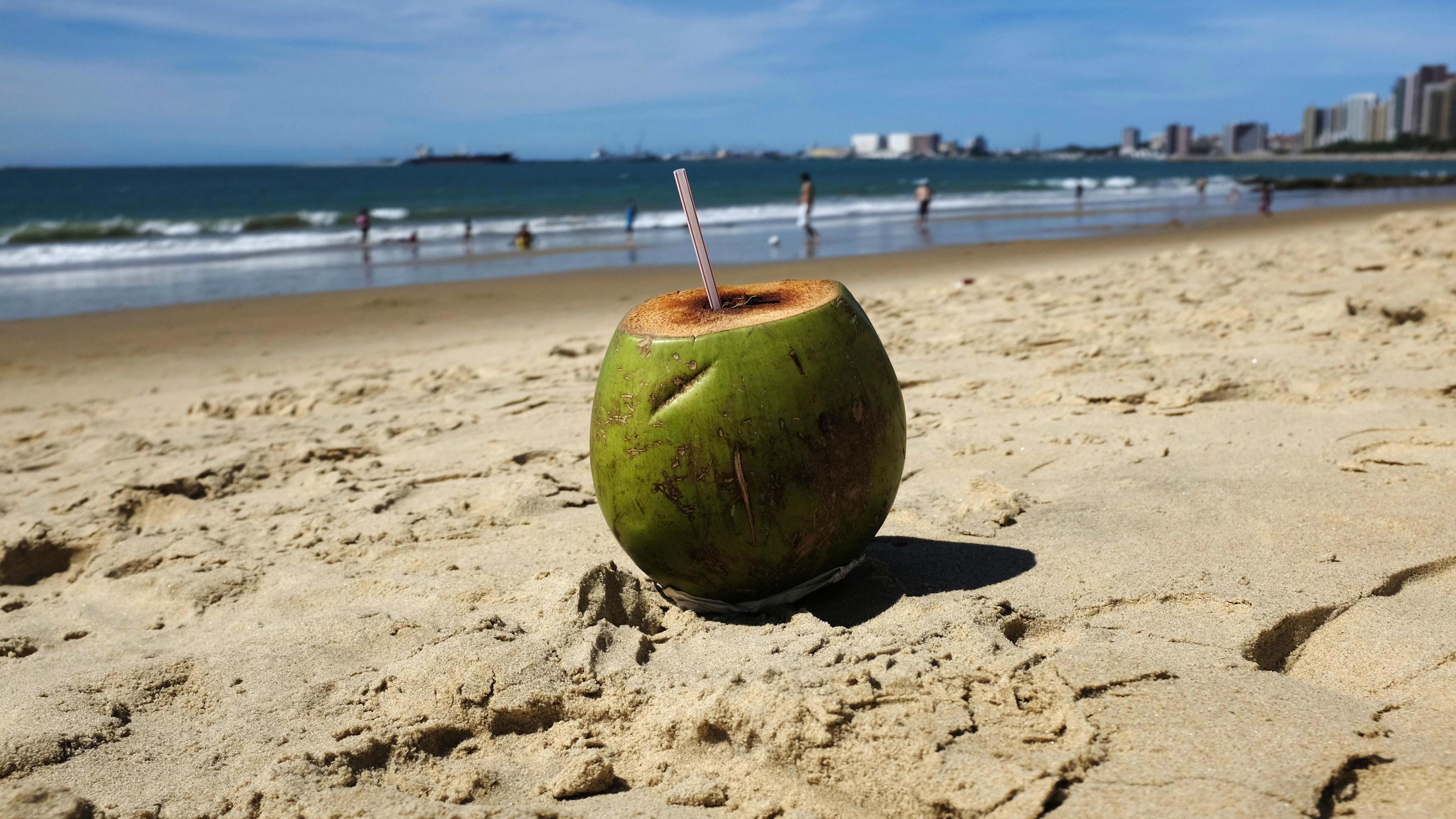 c-coconut-RTR3WPWF-Murad Sezer
