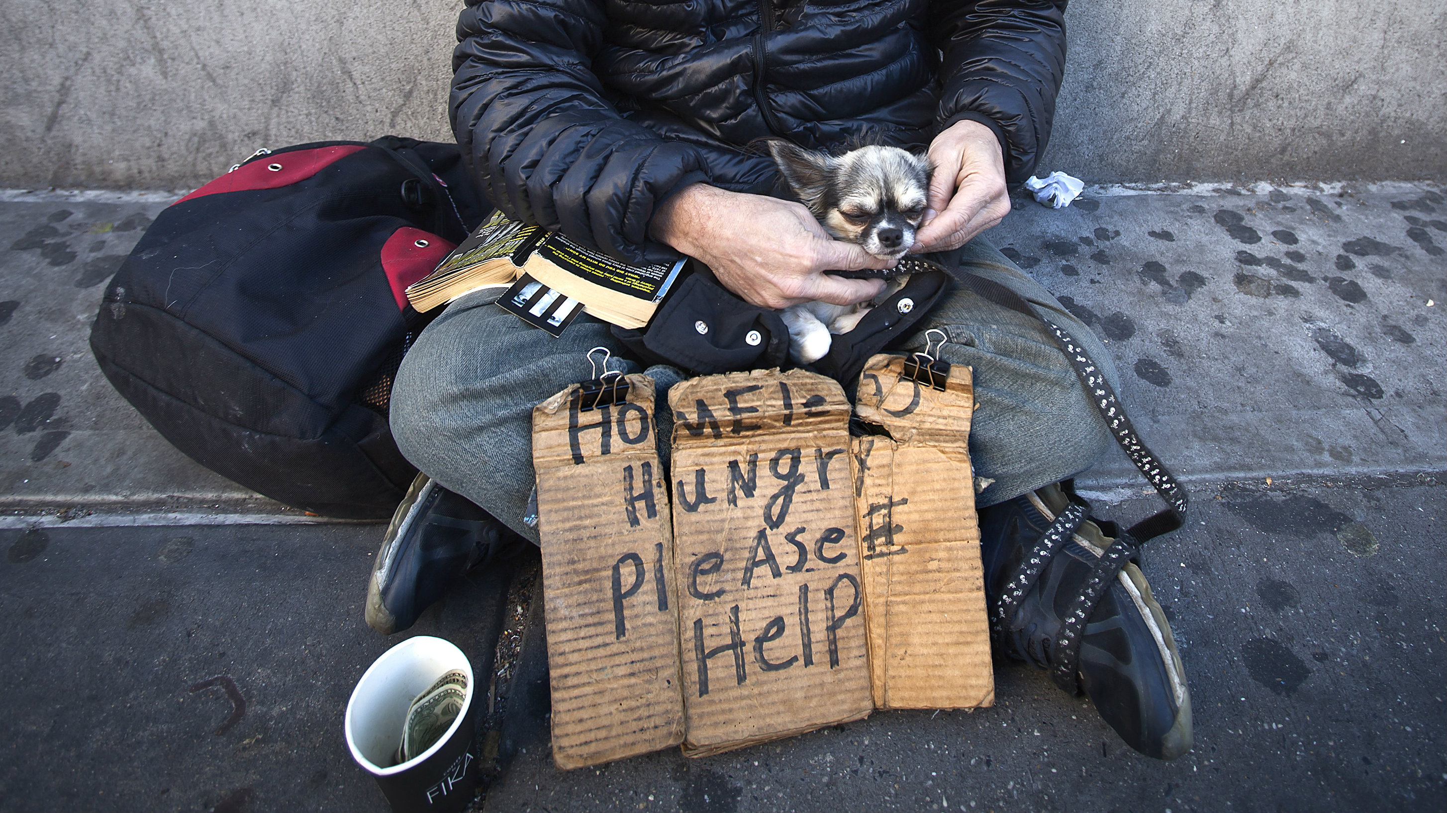 John Stewart caresses his dog Cuddles as he sits on 14th Street with a sign asking for help in New York October 27, 2014. Stewart has been homeless for 2.5 years and can't find a bed in a shelter because he refuses to give up his dog who he has had for 20 years. REUTERS/Carlo Allegri (UNITED STATES - Tags: SOCIETY ANIMALS)