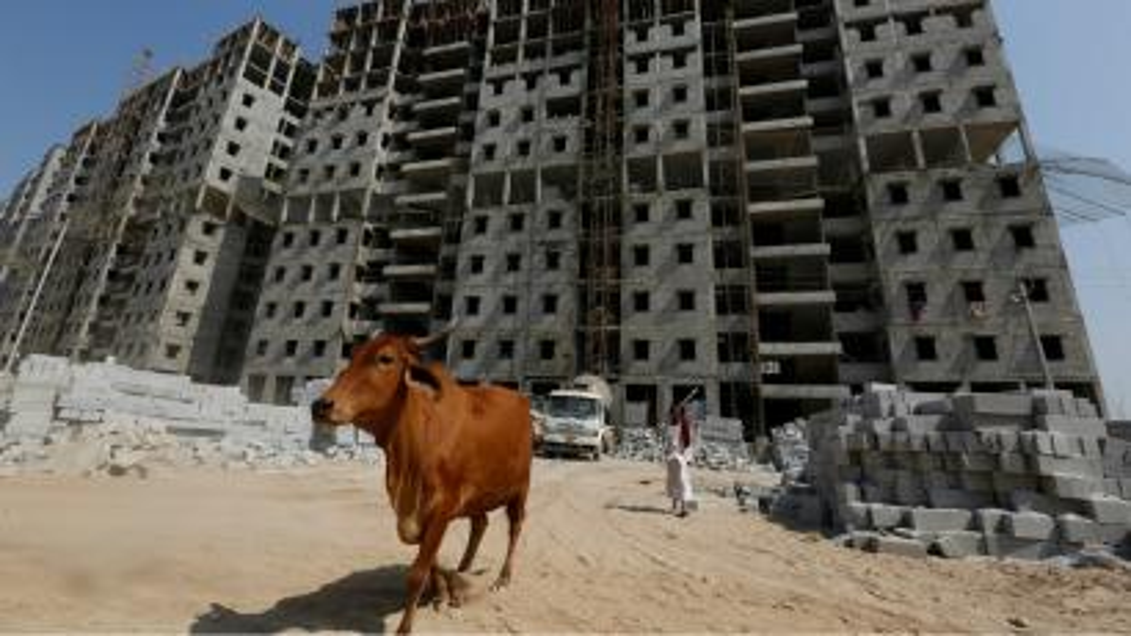 India-cow-economy