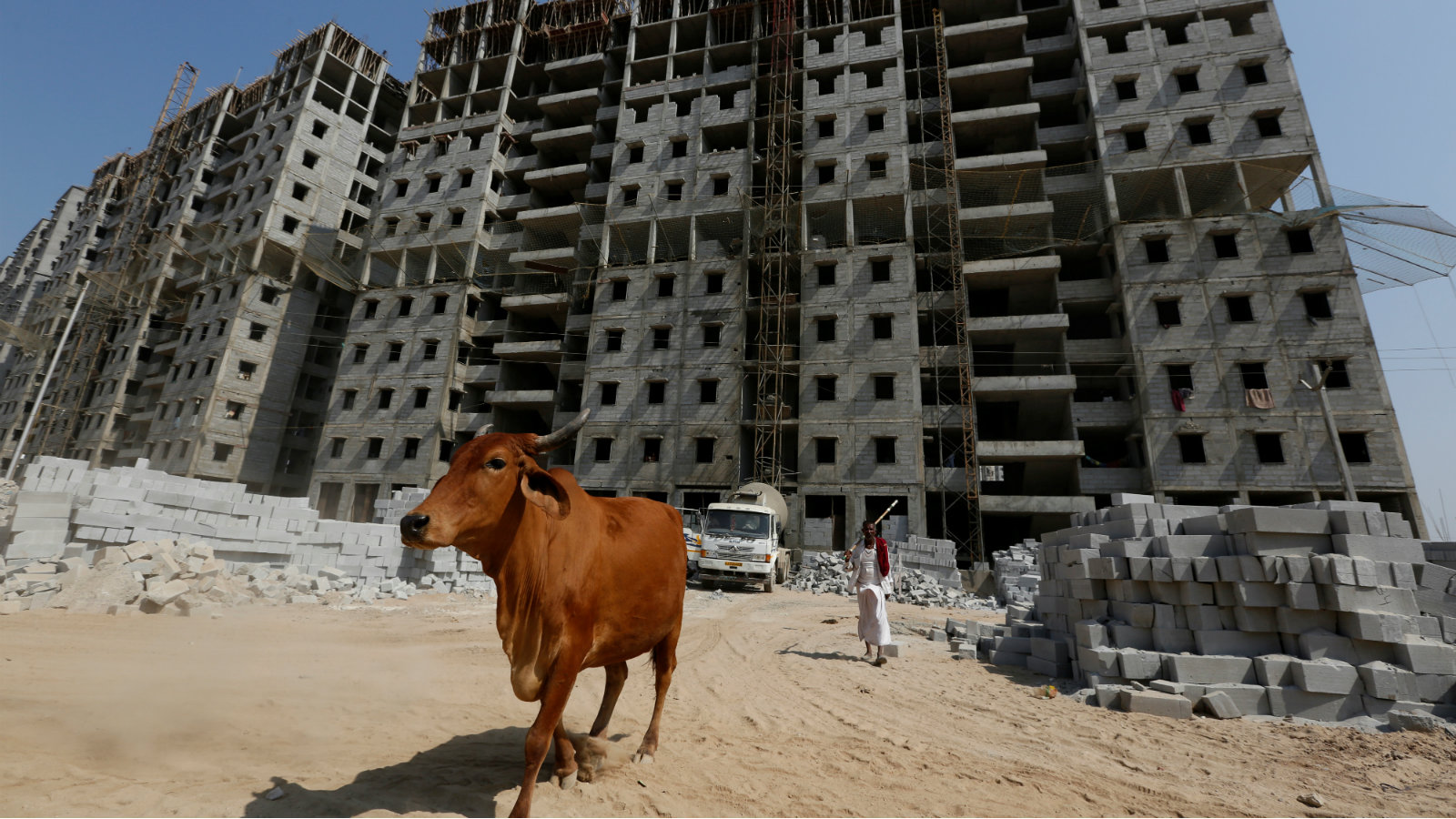 A man walks his cow in front of residential buildings under construction on the outskirts of Ahmedabad, India, February 29, 2016.