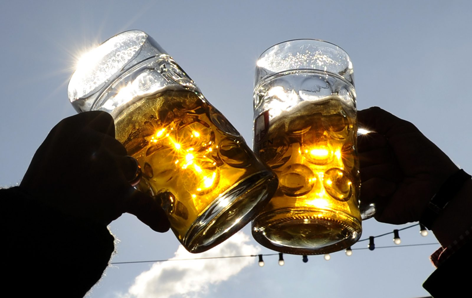 """Visitors toast each other on a sunny day during Oktoberfest in Munich, September 27, 2008. Millions of beer drinkers from around the world will come to the Bavarian capital Munich for the world's biggest and most famous beer festival, """"Oktoberfest"""", that runs until October 5."""
