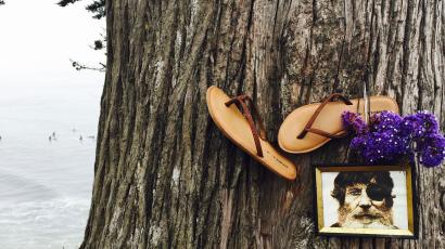 O'Neill image on tree at Pleasure Point.