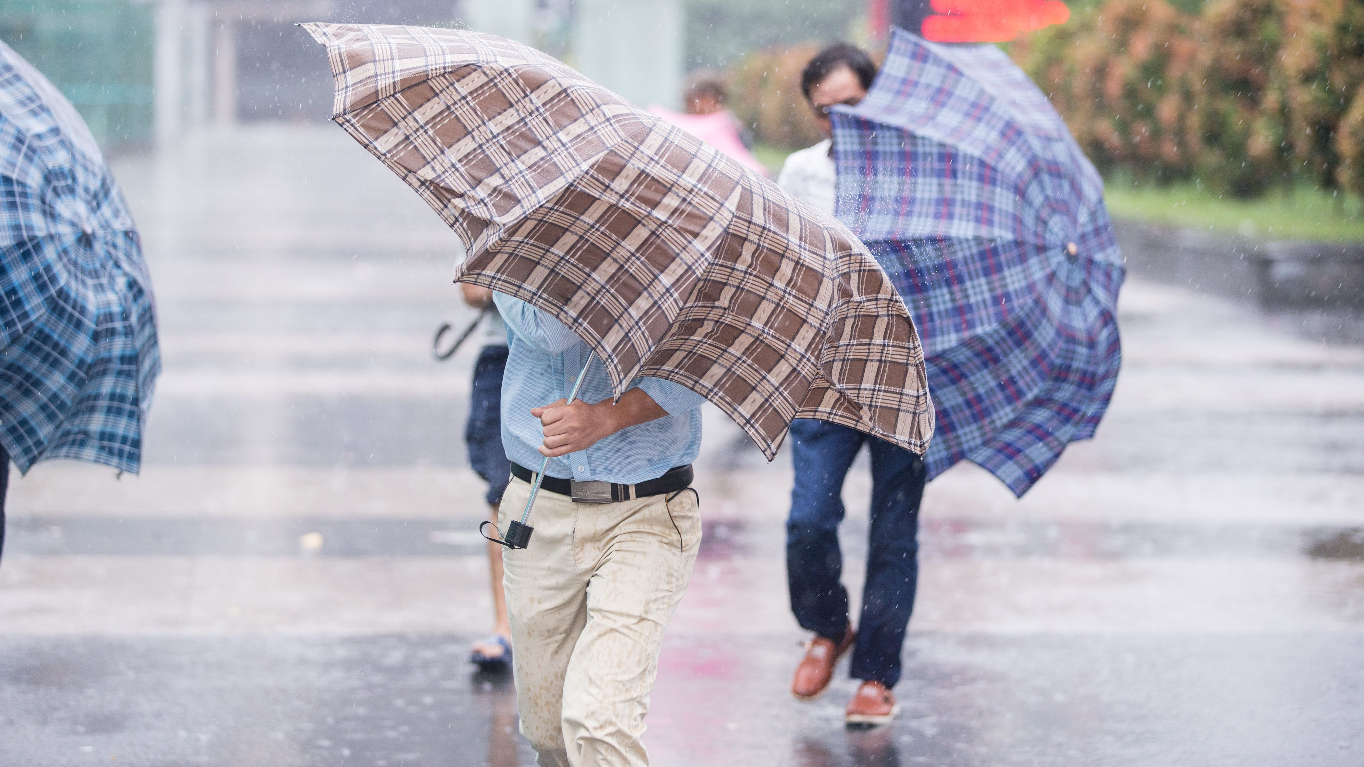 People walk holding umbrellas in rain brought by Typhoon Haima, in Shenzhen, Guangdong province, China, October 21, 2016. REUTERS/Stringer ATTENTION EDITORS - THIS IMAGE WAS PROVIDED BY A THIRD PARTY. EDITORIAL USE ONLY. CHINA OUT. NO COMMERCIAL OR EDITORIAL SALES IN CHINA.  - RTX2PTYO