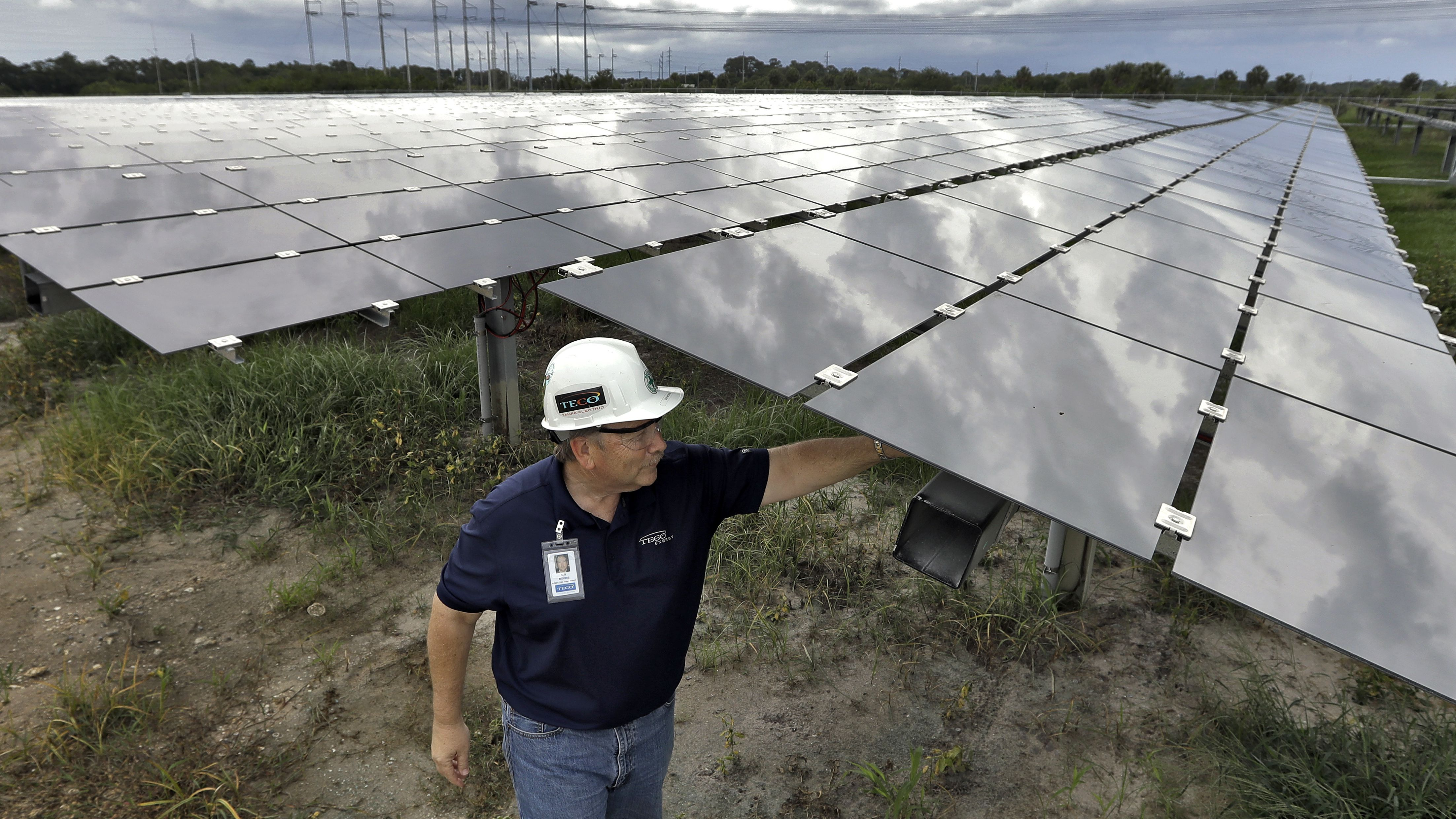 Guy Morris, project manager for the Tampa Electric Company's Big Bend Solar Station, adjusts some of the solar panels Friday, June 2, 2017, in Gibsonton, Fla. The panels at the station will power about 3,000 homes in the area. (AP Photo/Chris O'Meara)
