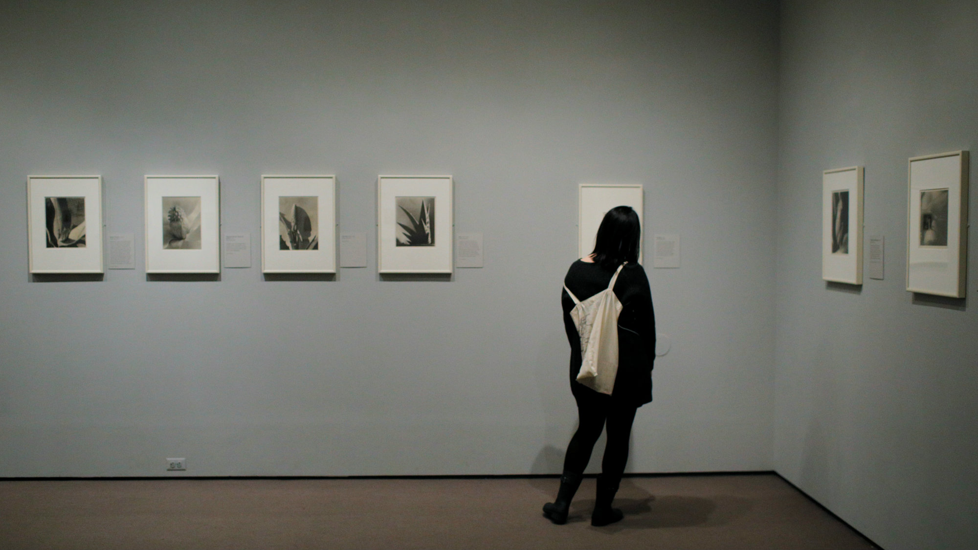 """A visitor looks at the exhibit """"Imogen Cunningham: In Focus"""" at the Museum of Fine Arts, Boston, in Boston, Massachusetts, U.S., April 26, 2017."""