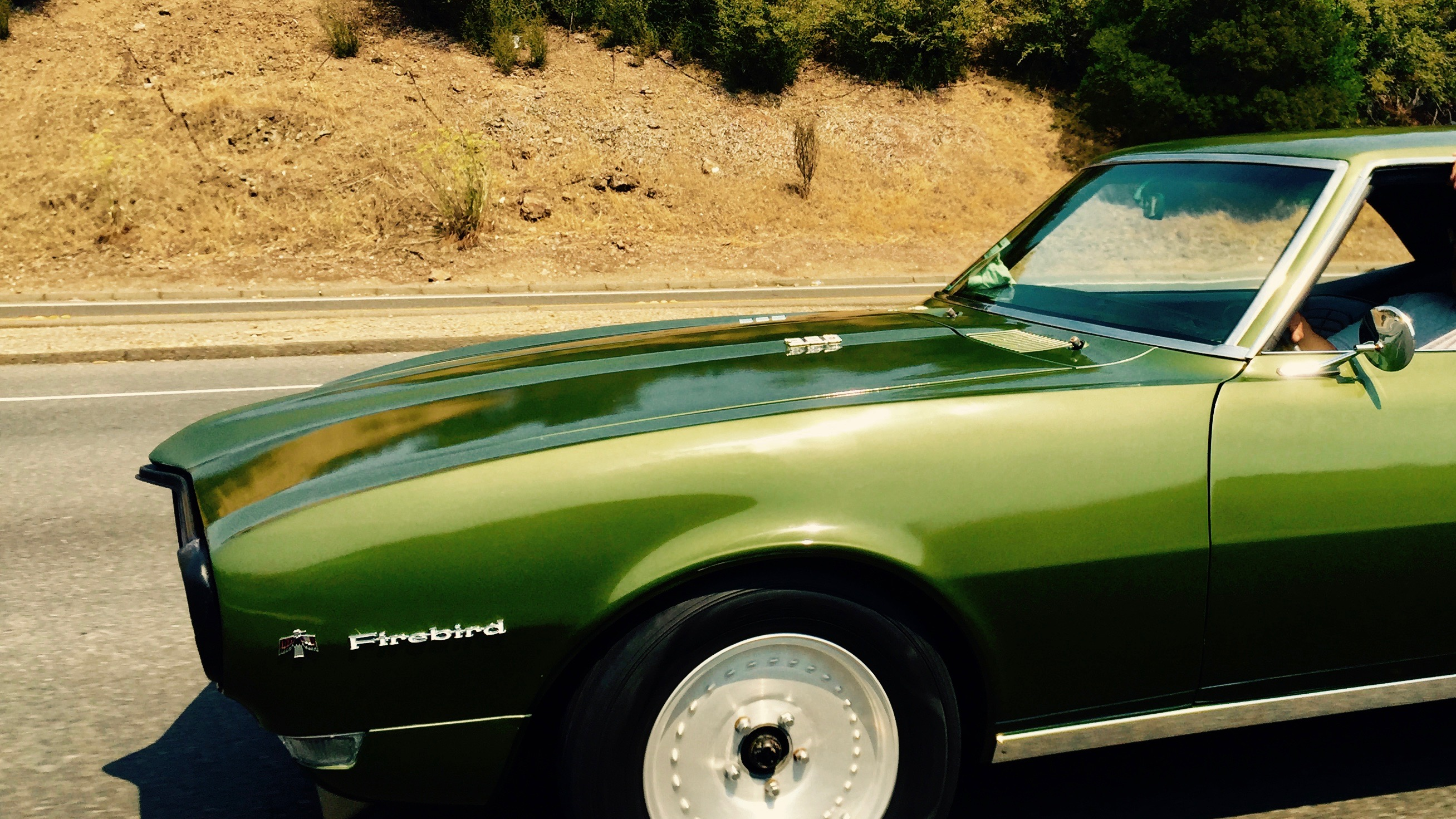 Green Firebird.