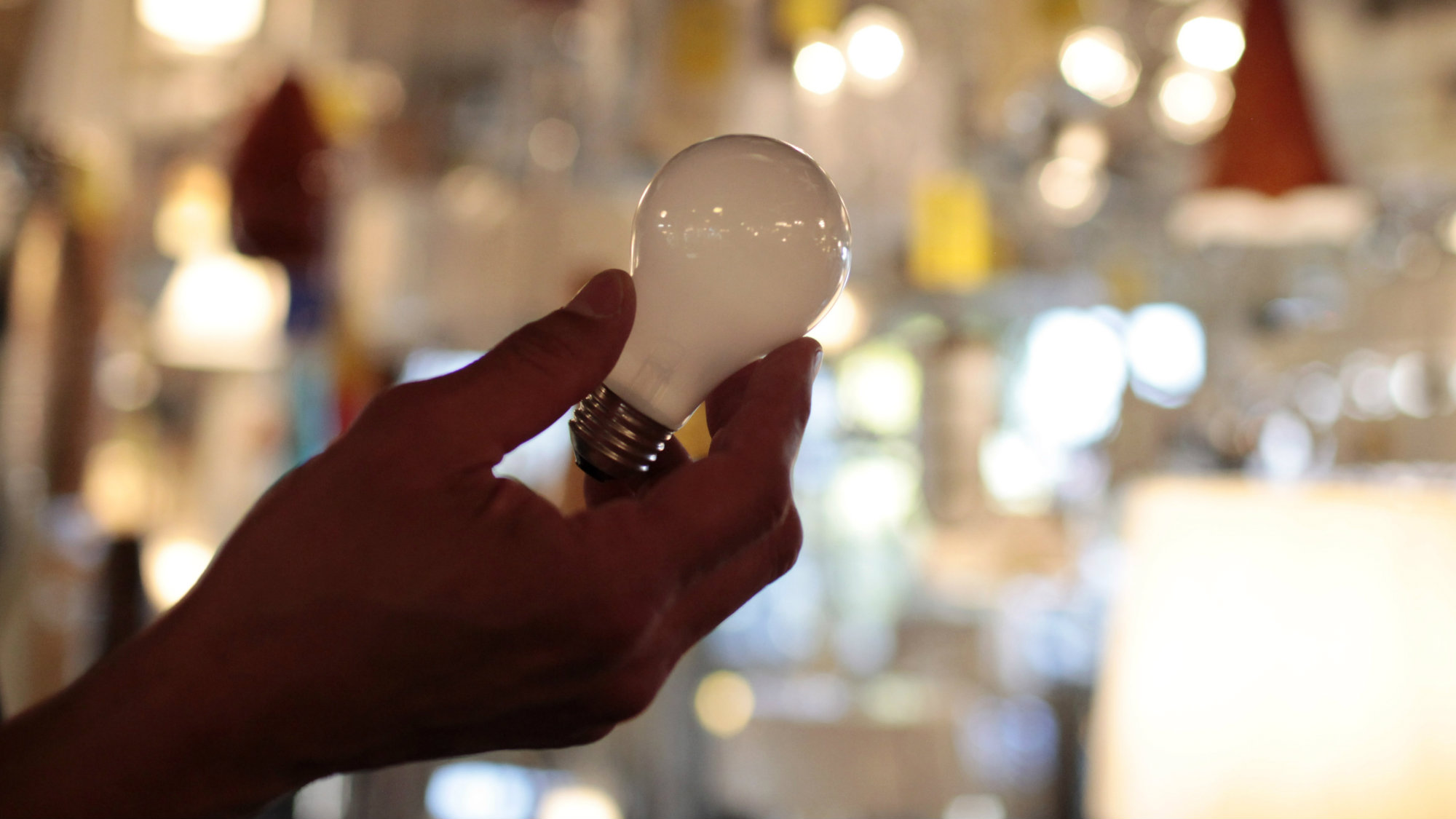 In this Jan. 21, 2011 file photo, manager Nick Reynoza holds a 100-watt incandescent light bulb at Royal Lighting in Los Angeles.