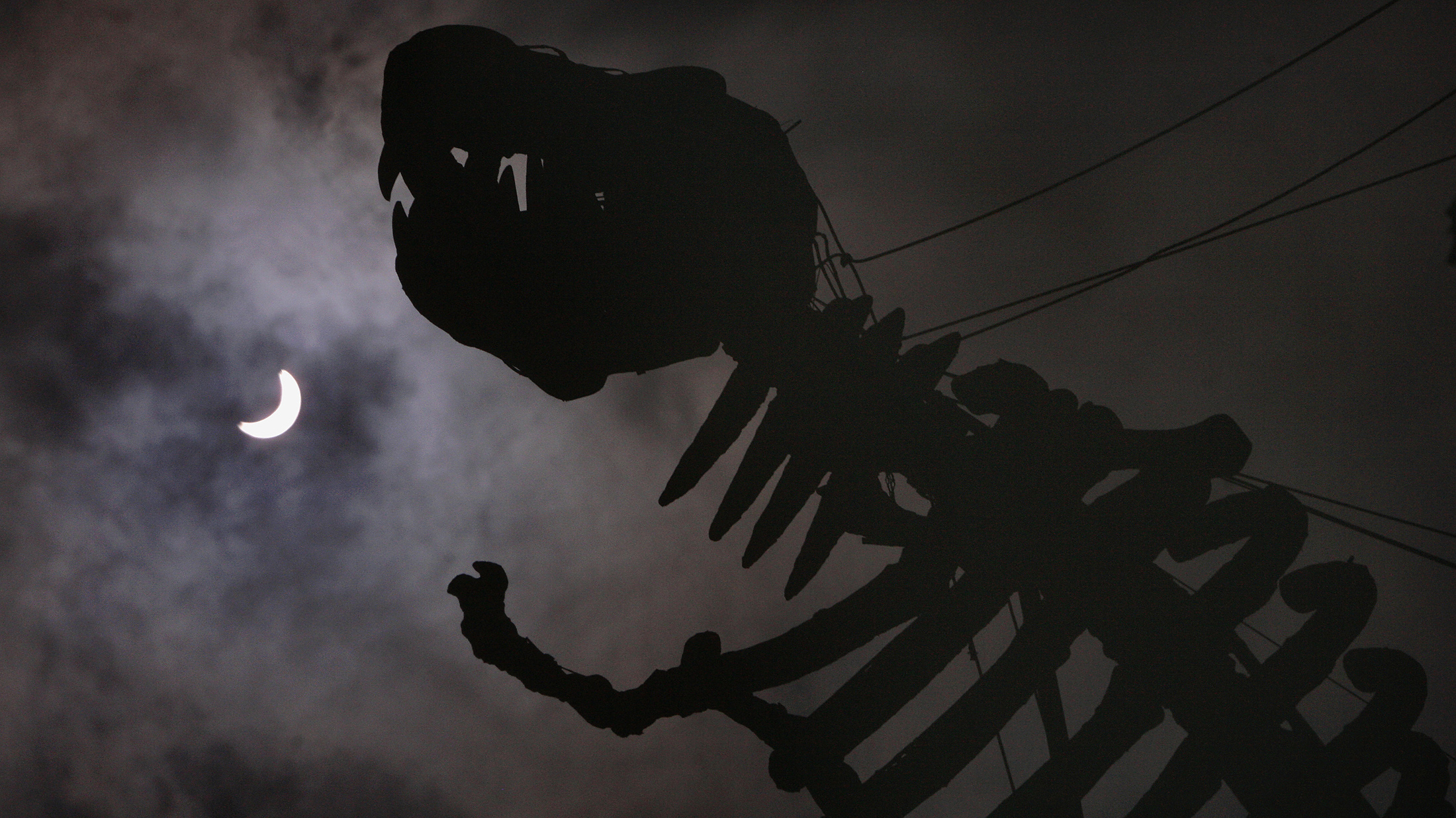 A dinosaur sculpture is silhouetted, outside a themed restaurant, against a partial solar eclipse in Taipei, July 22, 2009. A total solar eclipse began its flight on Wednesday across a narrow path of Asia, where it was expected to darken the skies for millions of people for more than six minutes in some places. REUTERS/Pichi Chuang (TAIWAN ENVIRONMENT SOCIETY) - RTR25WRB