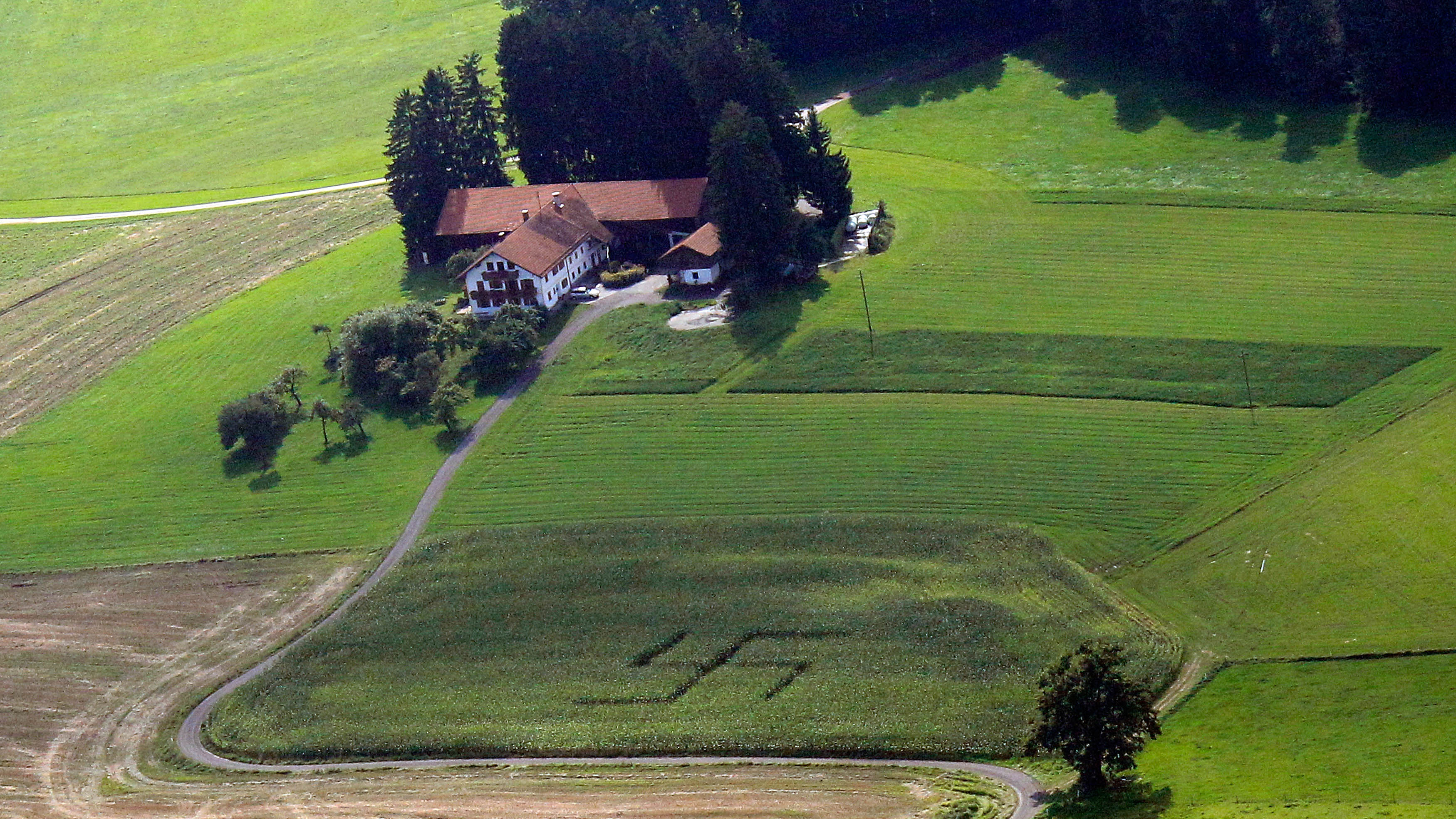 A giant swastika, trampled into a cornfield is pictured at a farm in the village Niklasreuth near Assling, about 30 km (18 miles) near the southern Bavarian town of Rosenheim August 24, 2010. Police are currently investigating who the culprits of the swastika are. The use of Nazi paraphernalia and symbols is illegal in Germany.