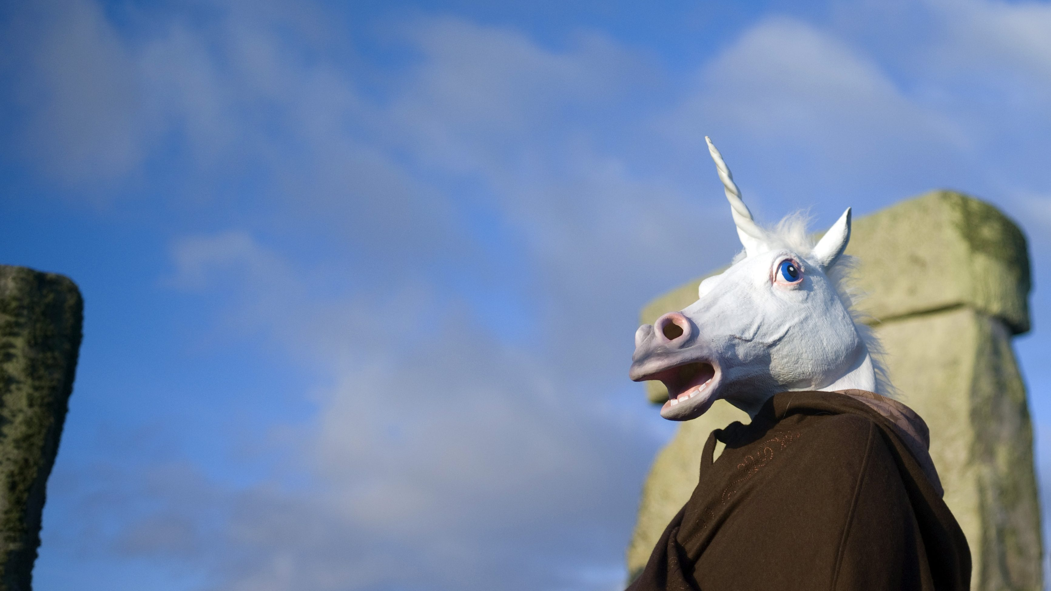 A reveller dressed as a unicorn celebrates the sunrise during the winter solstice at Stonehenge on Salisbury plain in southern England December 21, 2012. The winter solstice is the shortest day of the year, and the longest night of the year.