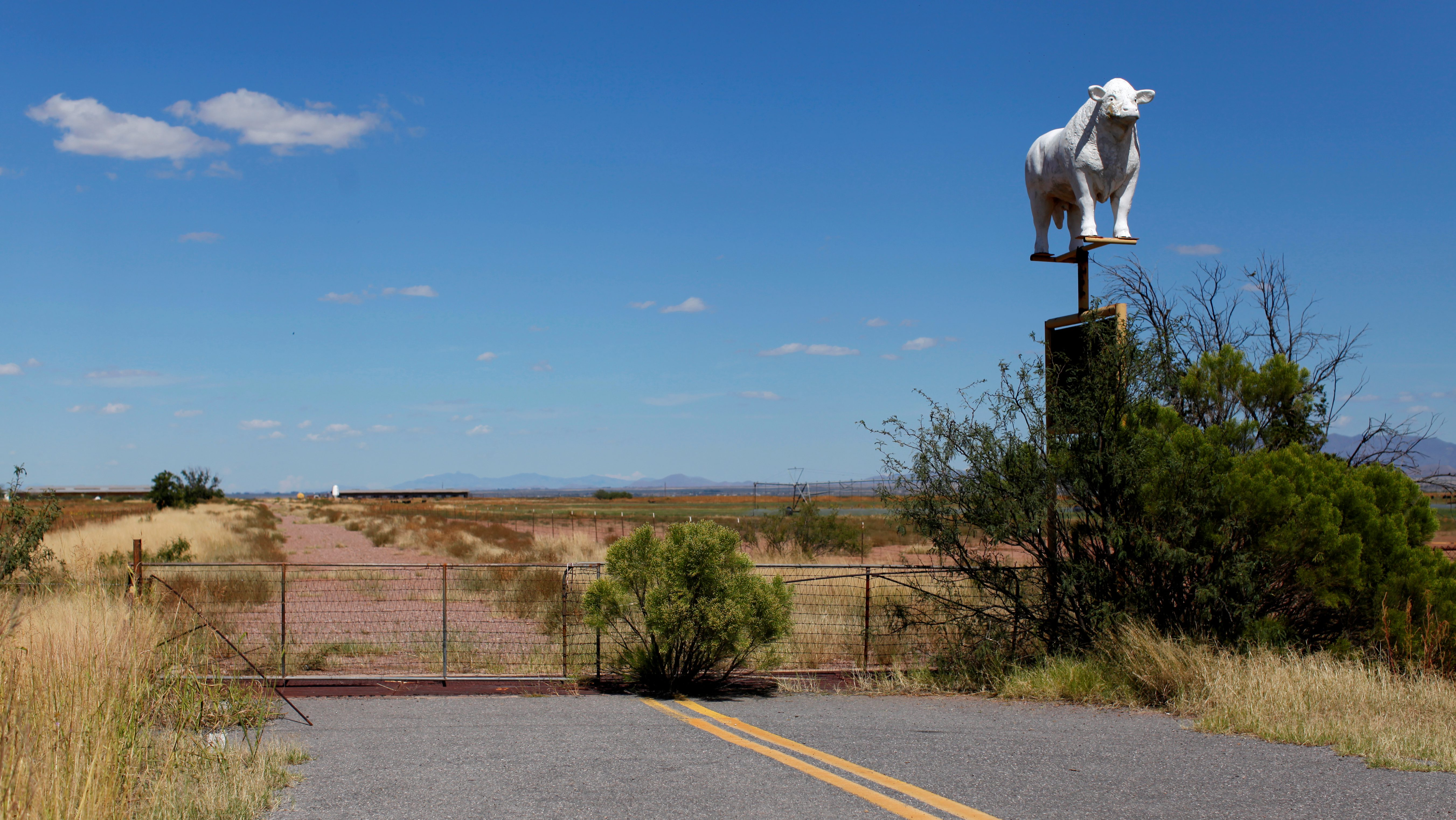 """A road abruptly ends next to a sign for a cattle ranch near Douglas, Arizona, United States, October 10, 2016. REUTERS/Mike Blake                      SEARCH """"U.S.-MEXICO FENCE"""" FOR THIS STORY. SEARCH """"WIDER IMAGE"""" FOR ALL STORIES - RTX2SAAV"""
