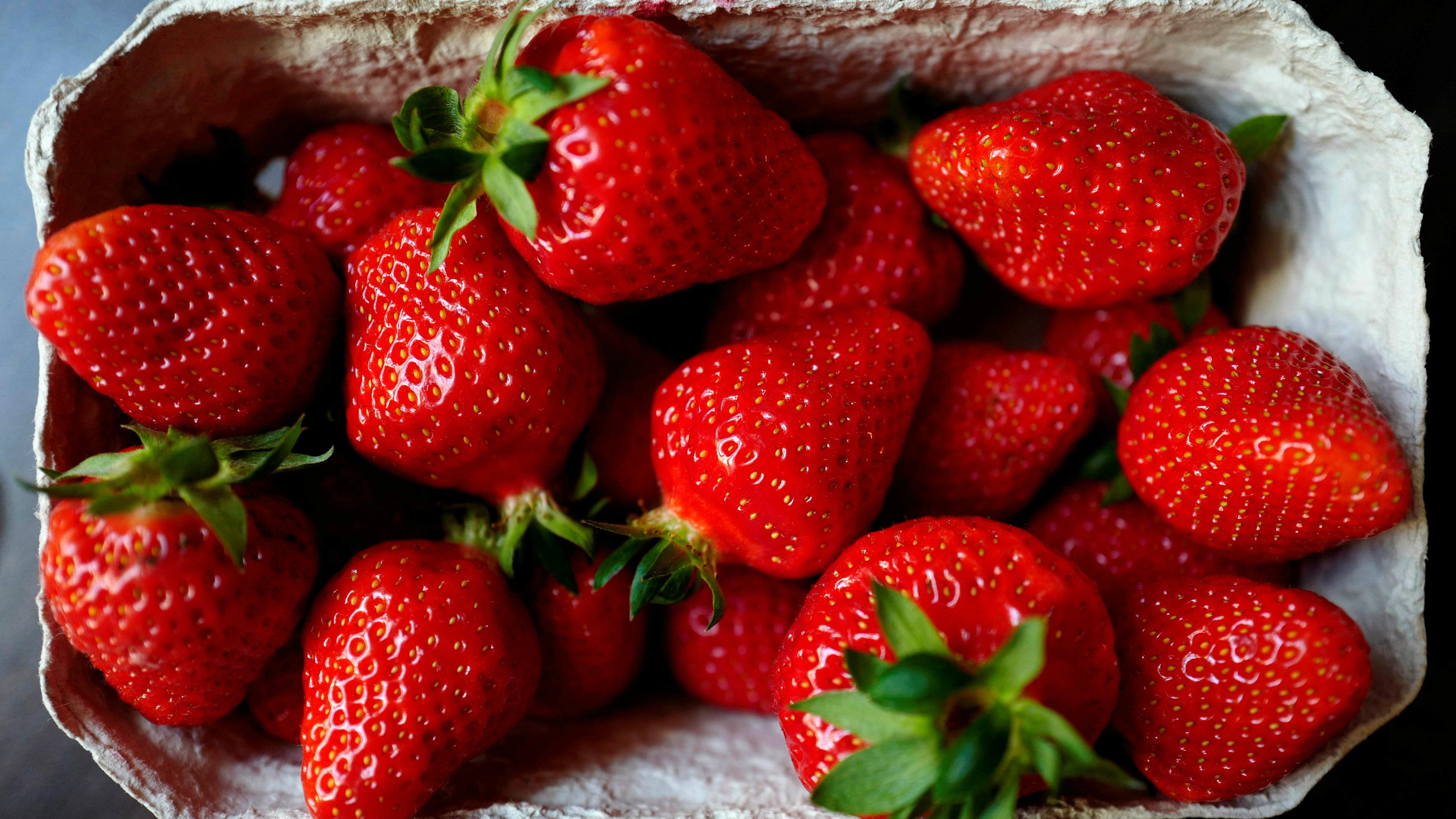 A cardboard punnet full of freshly picked strawberries