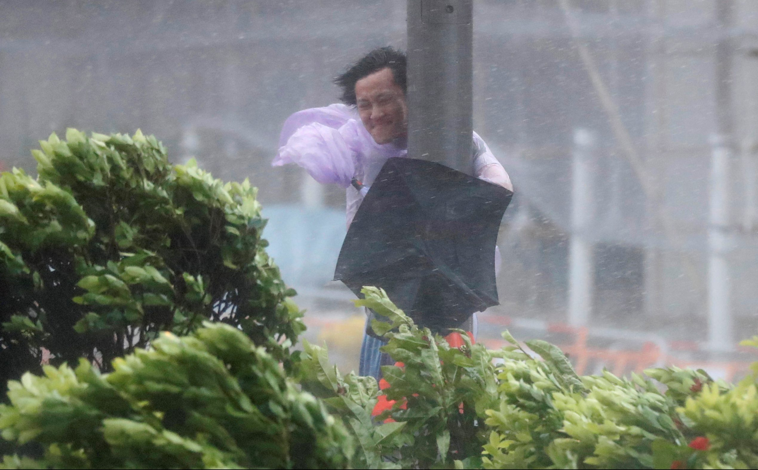 A man holds onto a lamp post against strong wind as Typhoon Hato hits Hong Kong, China August 23, 2017. REUTERS/Tyrone Siu TPX IMAGES OF THE DAY - RTS1CWDQ