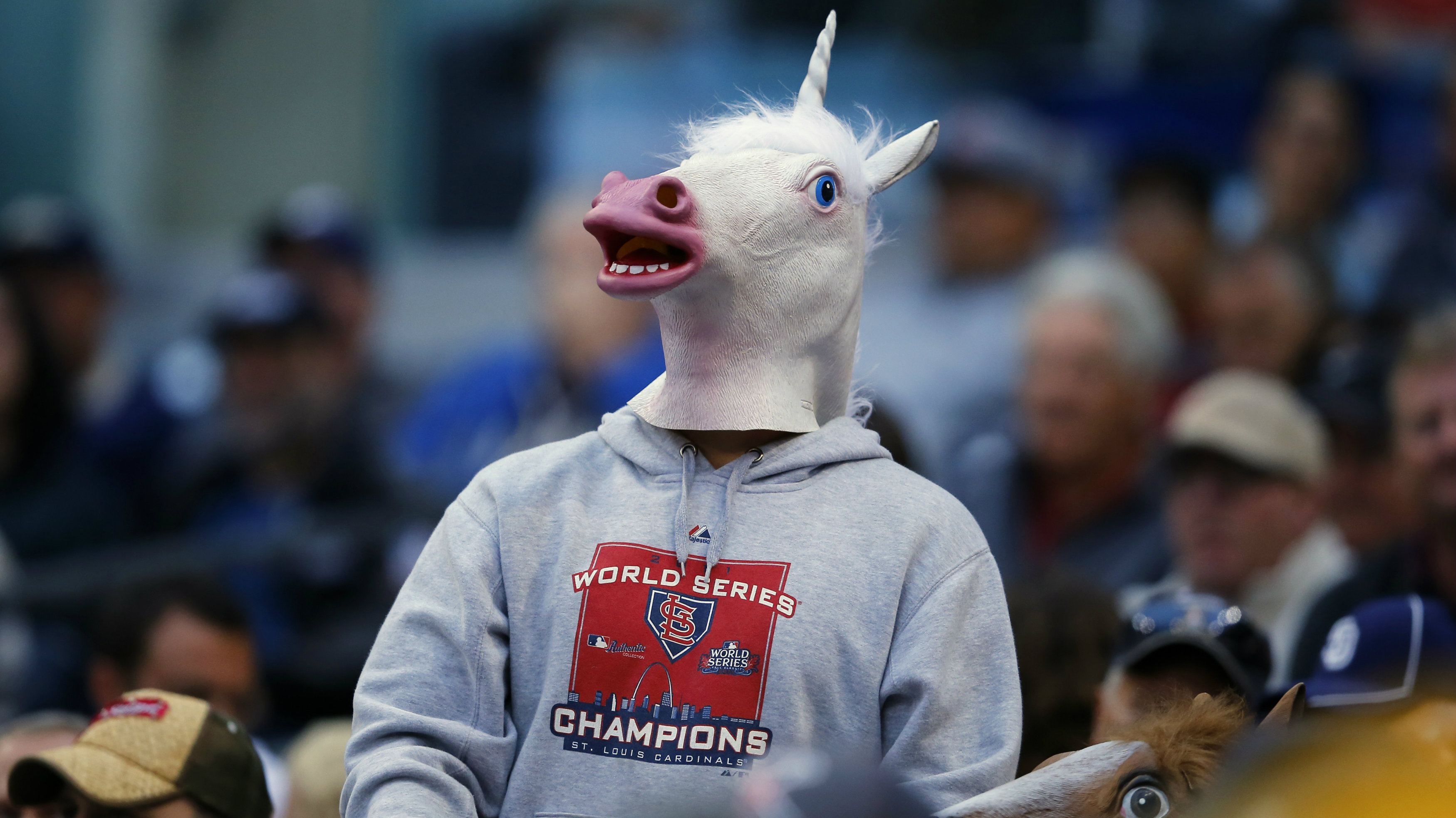 A baseball fan wearing a unicorn mask attends an Interleague MLB game between the San Diego Padres and the Toronto Blue Jays in San Diego, California June 2, 2013.