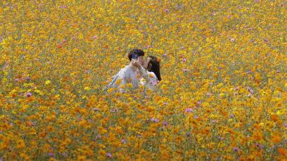 couple kisses in field