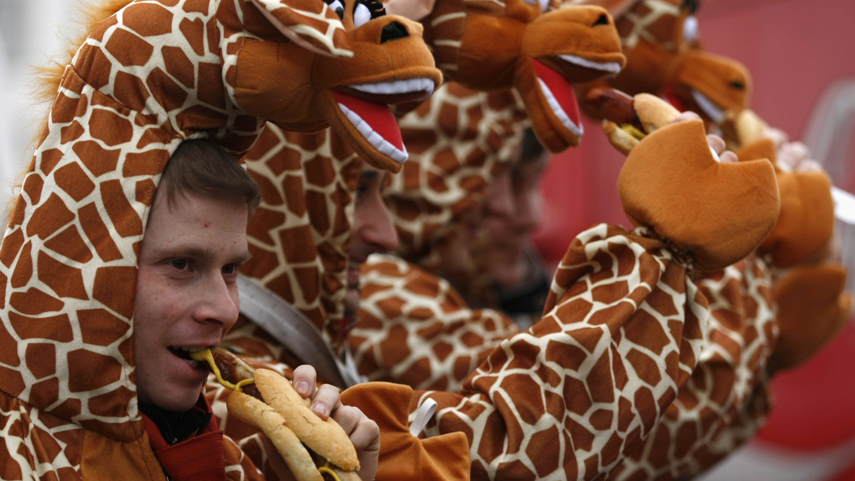 """Men dressed in giraffe costumes eat sausages during """"Weiberfastnacht"""" (Women's Carnival) in Cologne February 7, 2013. Women's Carnival marks the start of a week of street festivals, the highlight of the event being """"Rosenmontag"""" (Rose Monday), the final day of the carnival where mass processions are held. REUTERS/Ina Fassbender  (GERMANY - Tags: SOCIETY) - GM1E9271H4402"""