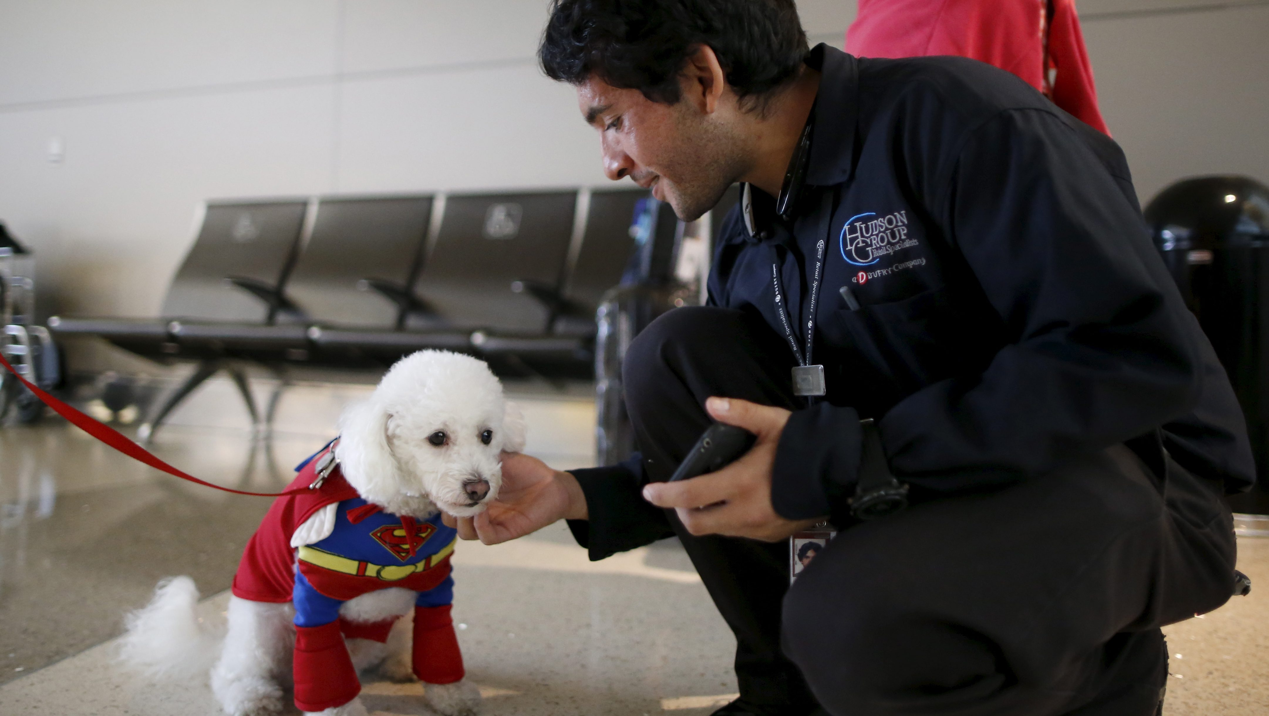A therapy dog wears a Superman Halloween costume as part of a program to de-stress passengers at the international boarding gate area of LAX airport in Los Angeles, California, United States, October 27, 2015. REUTERS/Lucy Nicholson - GF20000035658