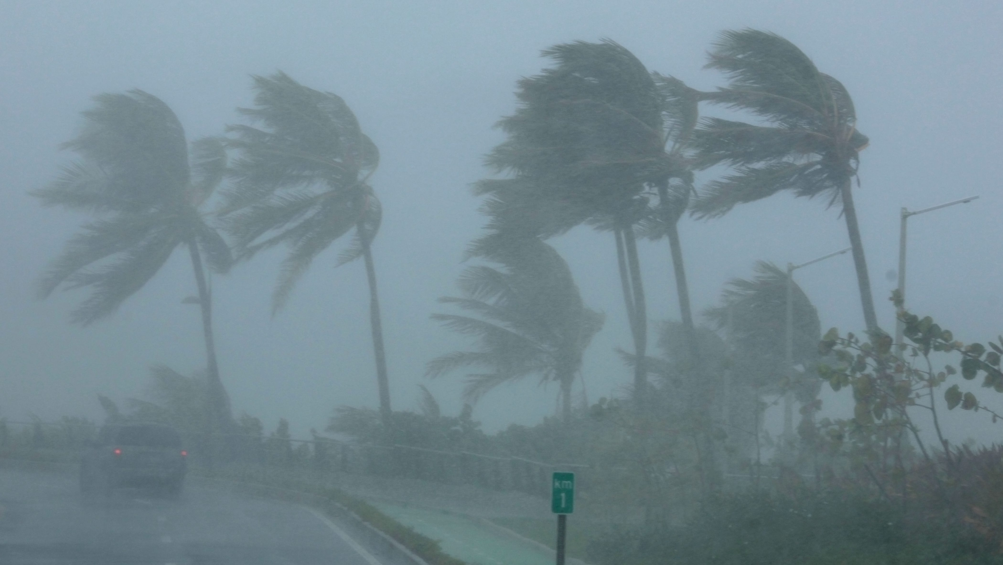 Palm trees bend in the wind as Hurricane Irma slammed across islands in the northern Caribbean on Wednesday, in San Juan, Puerto Rico September 6, 2017.  REUTERS/Alvin Baez - RC19051D3200