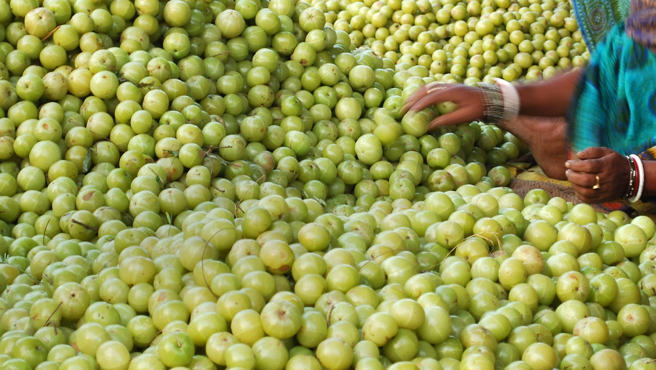 """""""The elixir of life"""": Hollywood has discovered the Indian gooseberry and celebs can't get enough"""