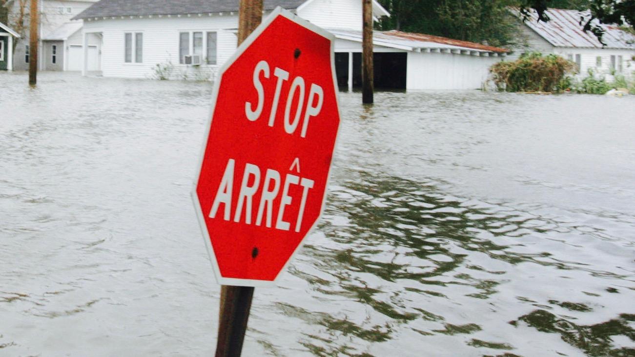 Bilingual stop sign in Louisiana.