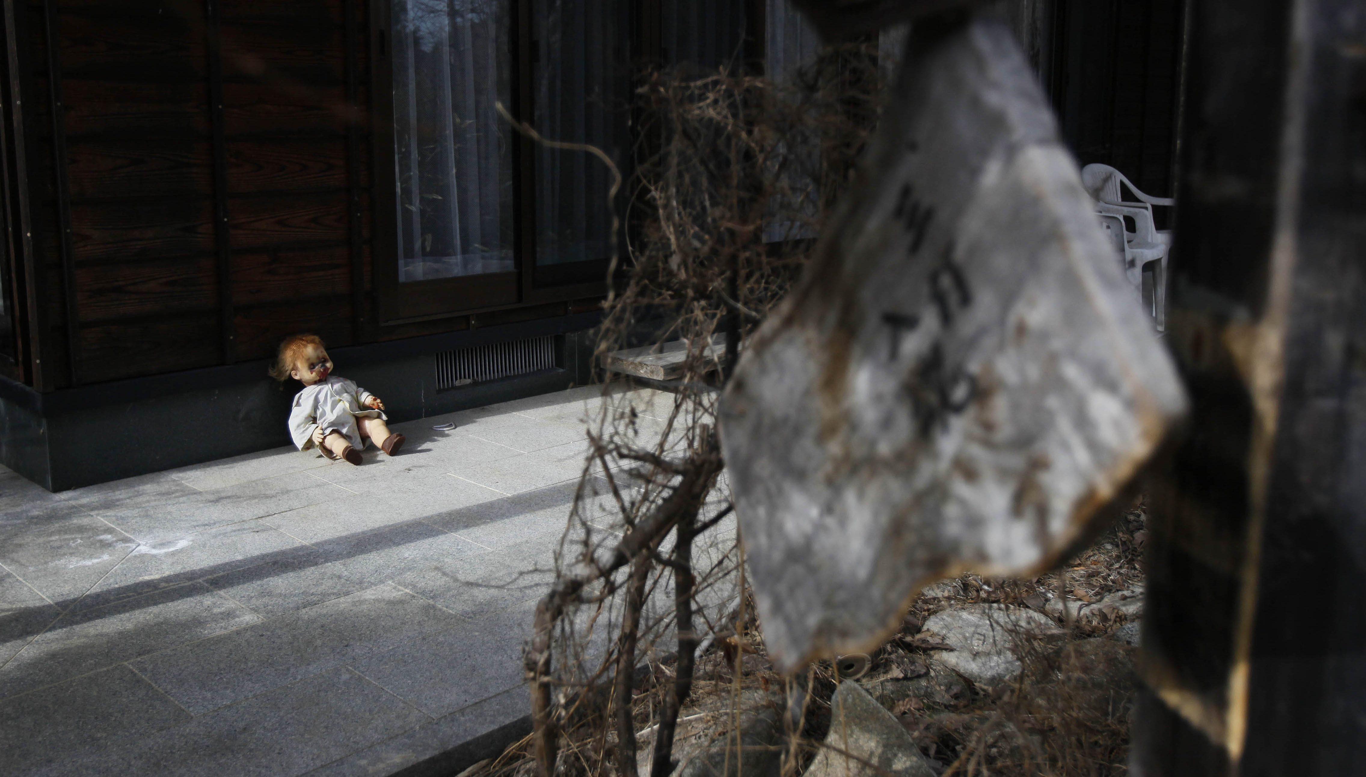 Japan Fukushima By the Numbers