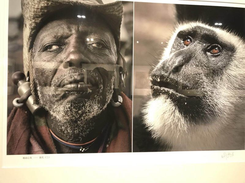 Africans in China: An exhibit comparing Africans to animals shows ...