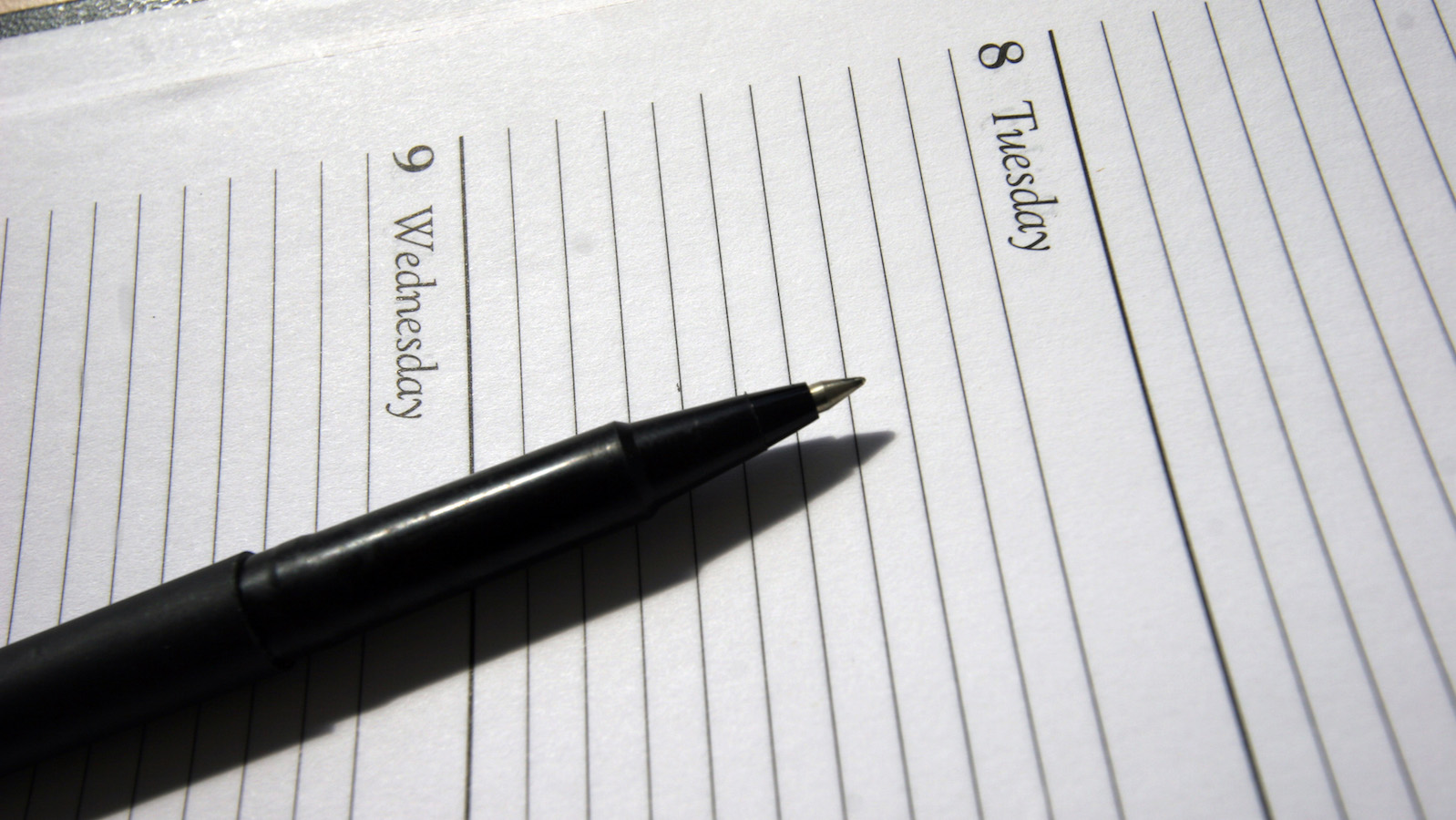A generic picture of a diary. REUTERS/Catherine Benson CRB - RP6DRNBBKLAB