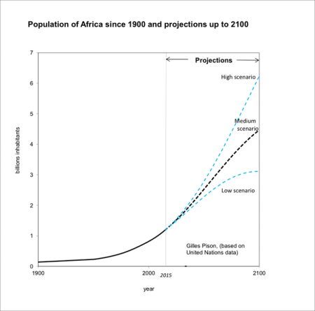 Africa population will be a third of all people on earth by
