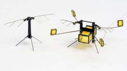 Two images of the robo-bee robots