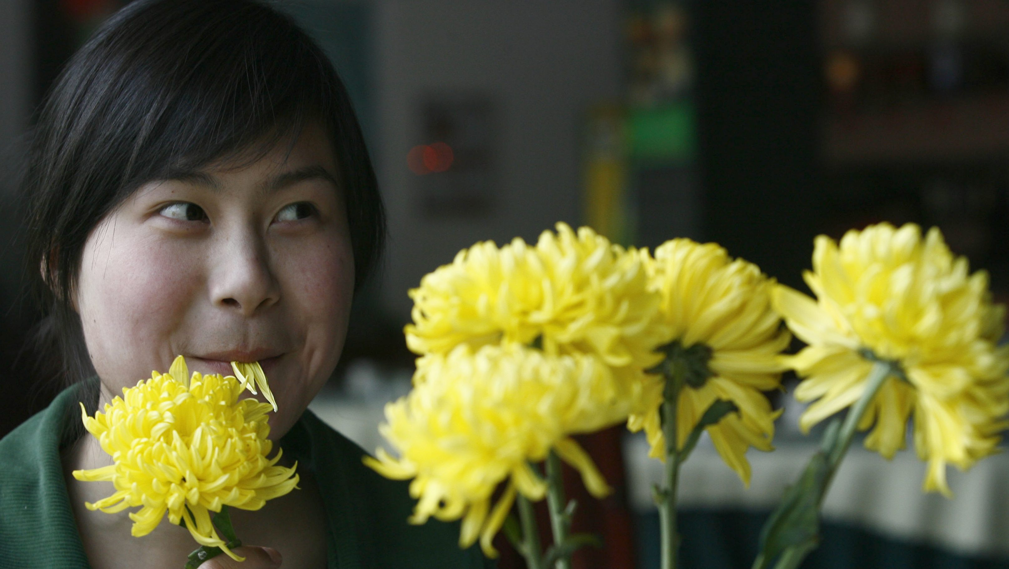 A customer eats a chrysanthemum flower at a restaurant in Wuhan, Hubei province March 2, 2008. More than 20 dishes made of various flowers including rose, lily, chrysanthemum, cherry blossom and orchids are served in the restaurant, local media reported. REUTERS/Stringer (CHINA) CHINA OUT - GM1E4321GUL01